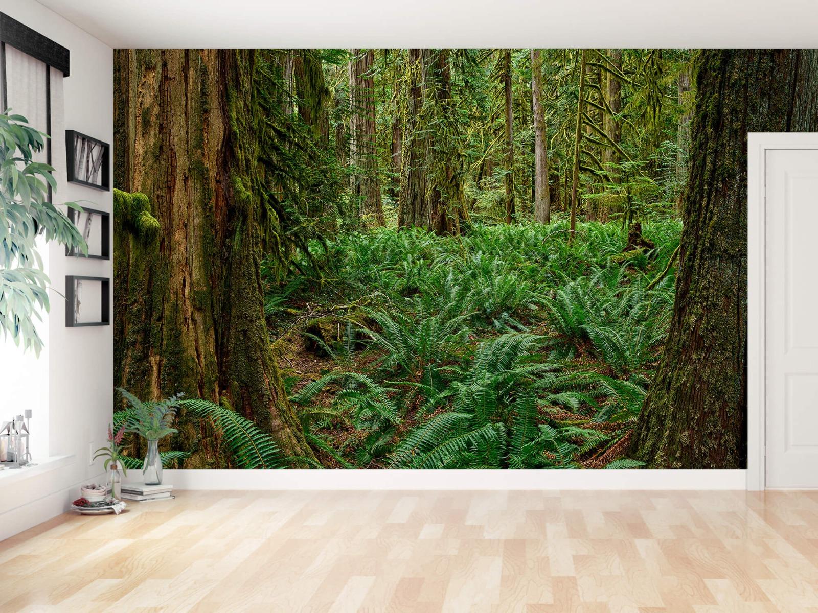 Bos behang - Varens en bomen - Wallexclusive - Slaapkamer 11