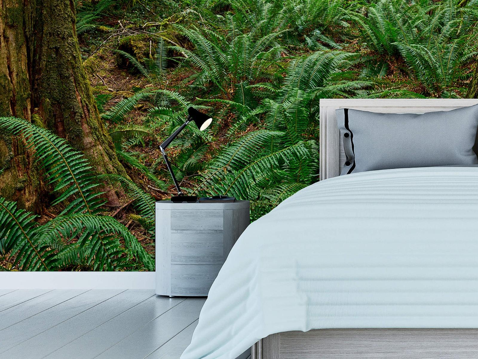 Bos behang - Varens en bomen - Wallexclusive - Slaapkamer 12