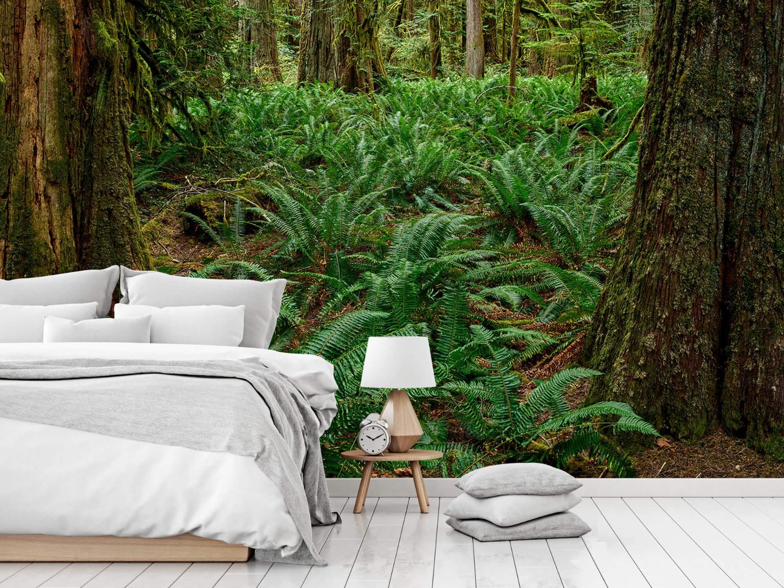 Bos behang - Varens en bomen - Wallexclusive - Slaapkamer 14