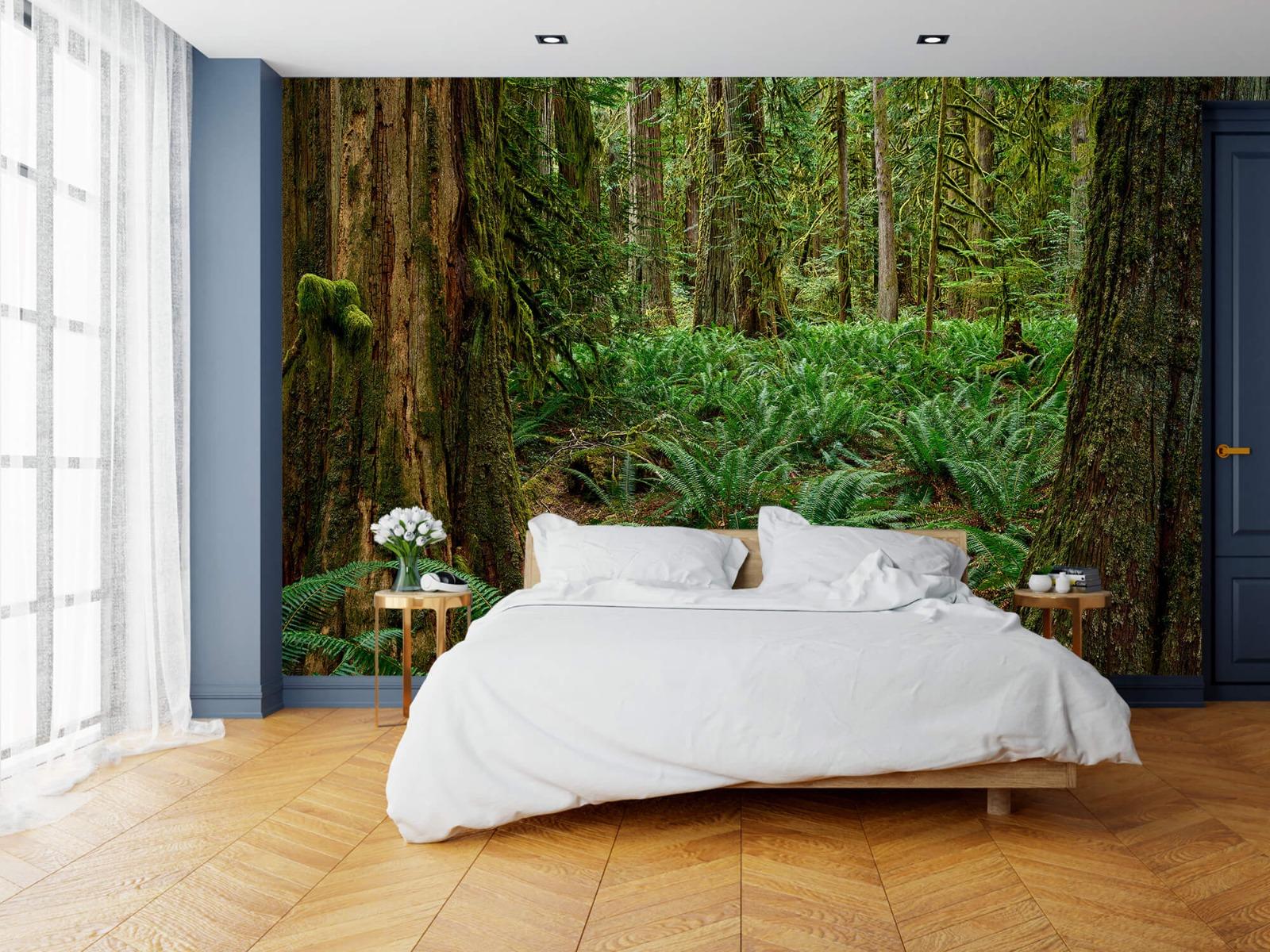Bos behang - Varens en bomen - Wallexclusive - Slaapkamer 15