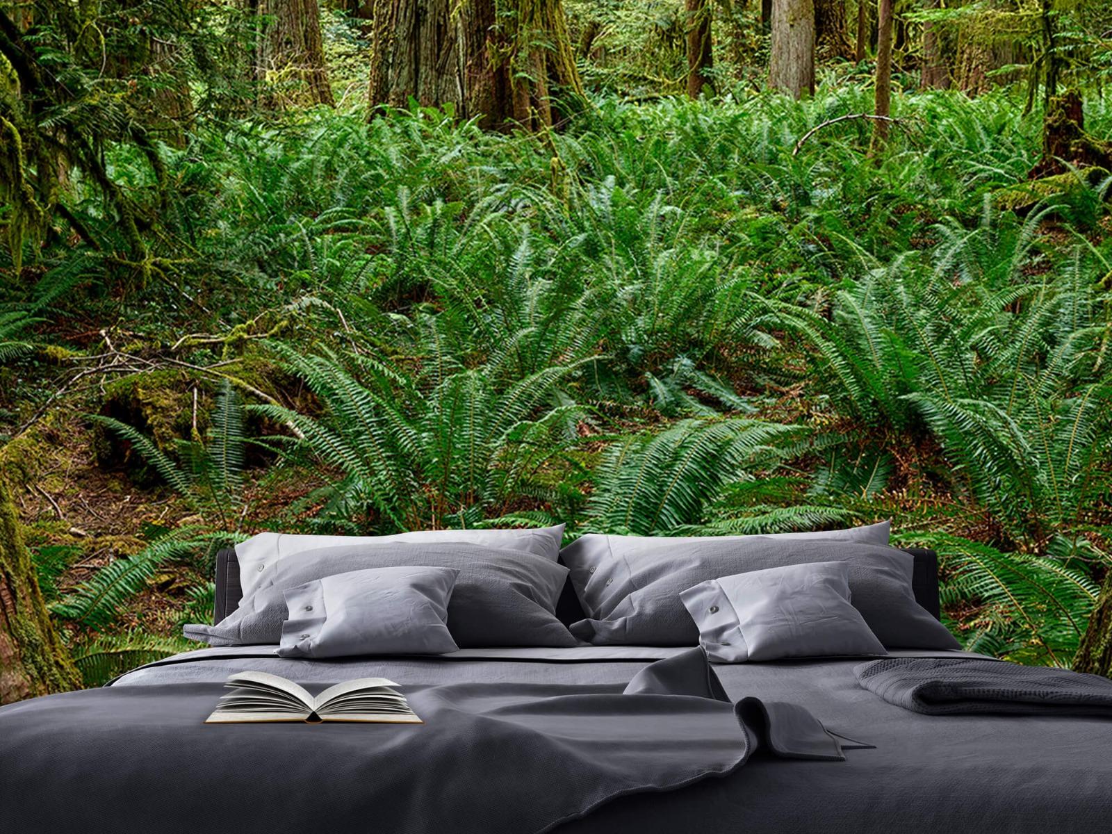 Bos behang - Varens en bomen - Wallexclusive - Slaapkamer 17