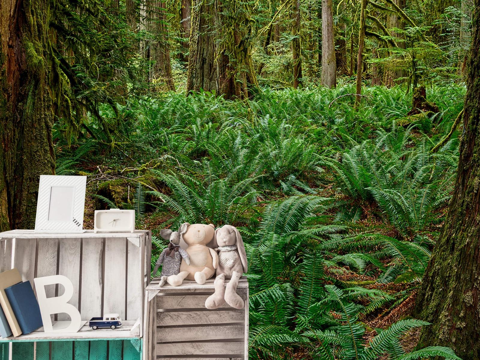 Bos behang - Varens en bomen - Wallexclusive - Slaapkamer 19