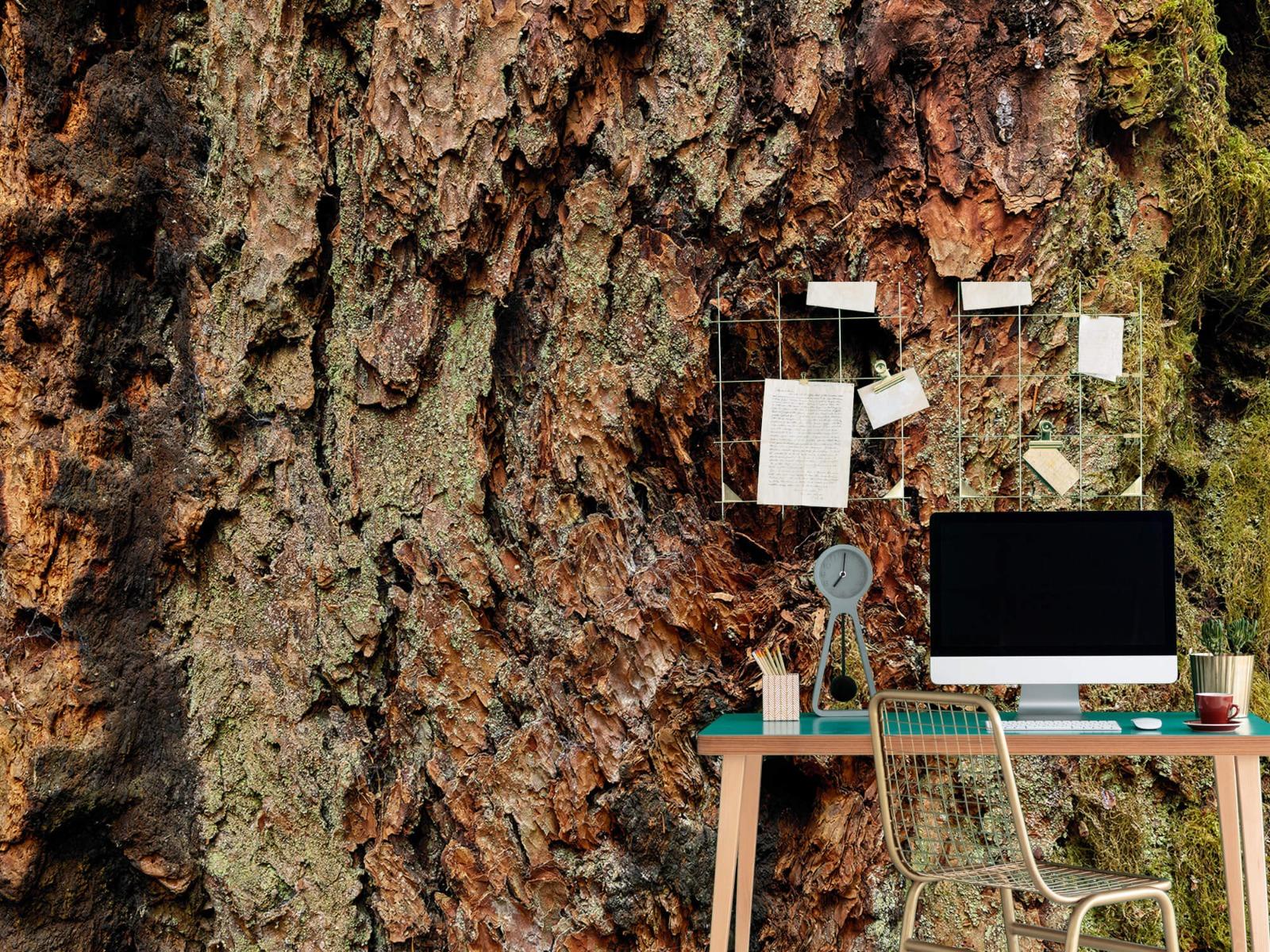 Hout behang - Boomschors oude boom - Wallexclusive - Slaapkamer 7