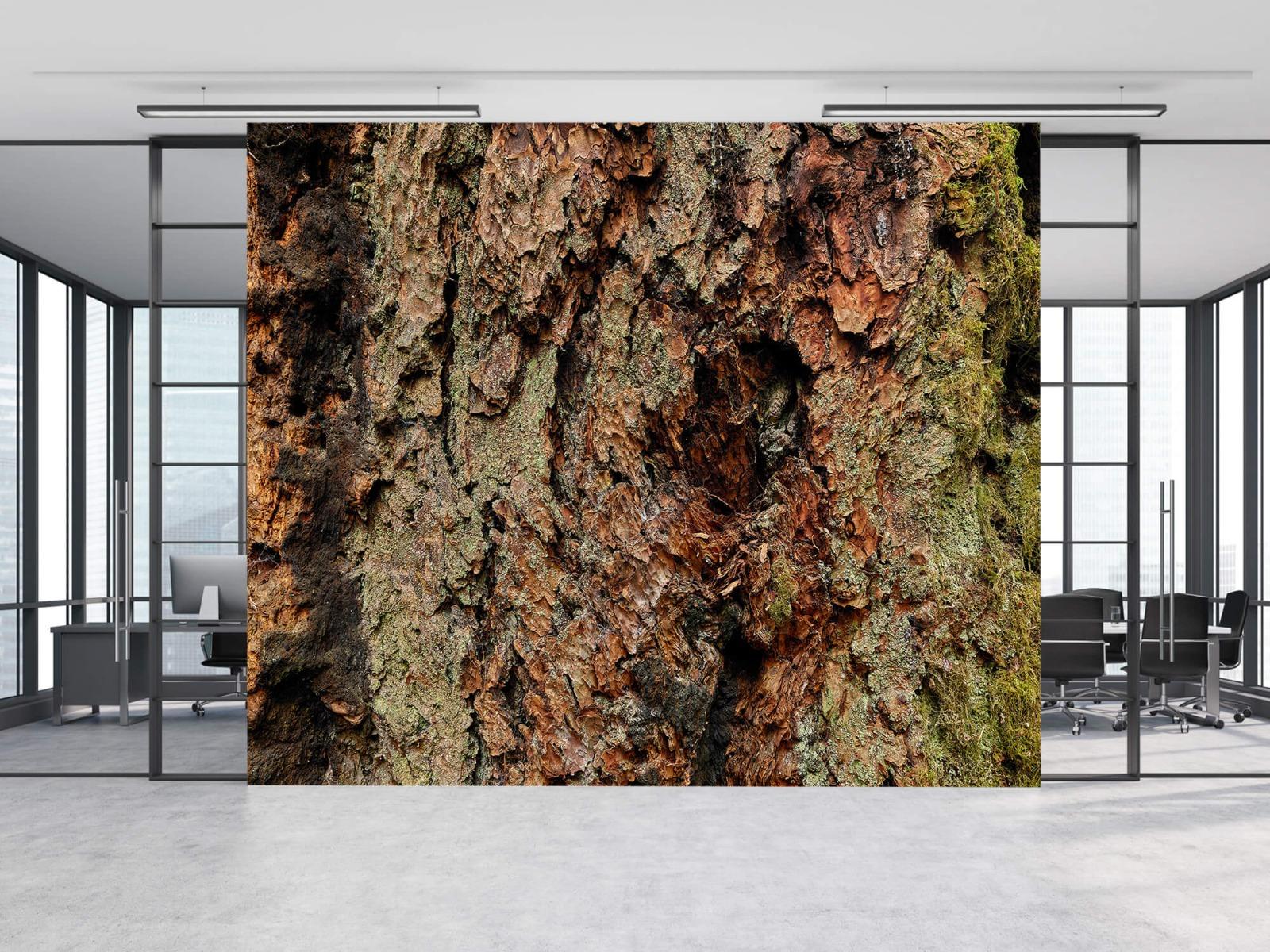 Hout behang - Boomschors oude boom - Wallexclusive - Slaapkamer 8