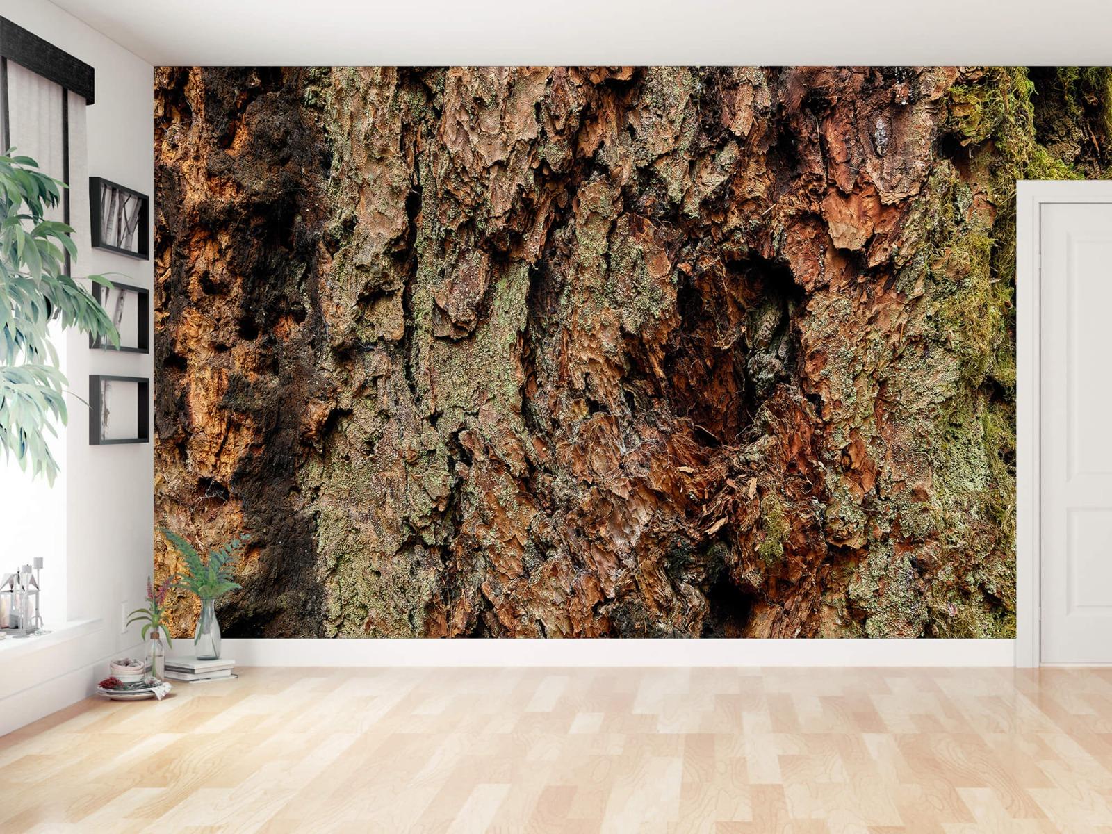 Hout behang - Boomschors oude boom - Wallexclusive - Slaapkamer 11