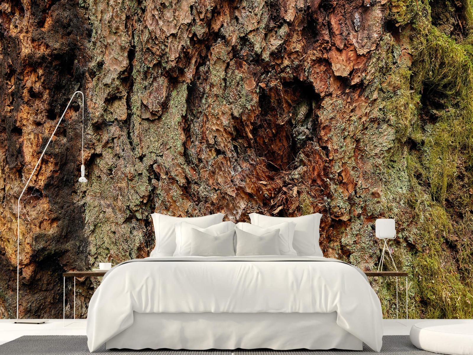 Hout behang - Boomschors oude boom - Wallexclusive - Slaapkamer 16