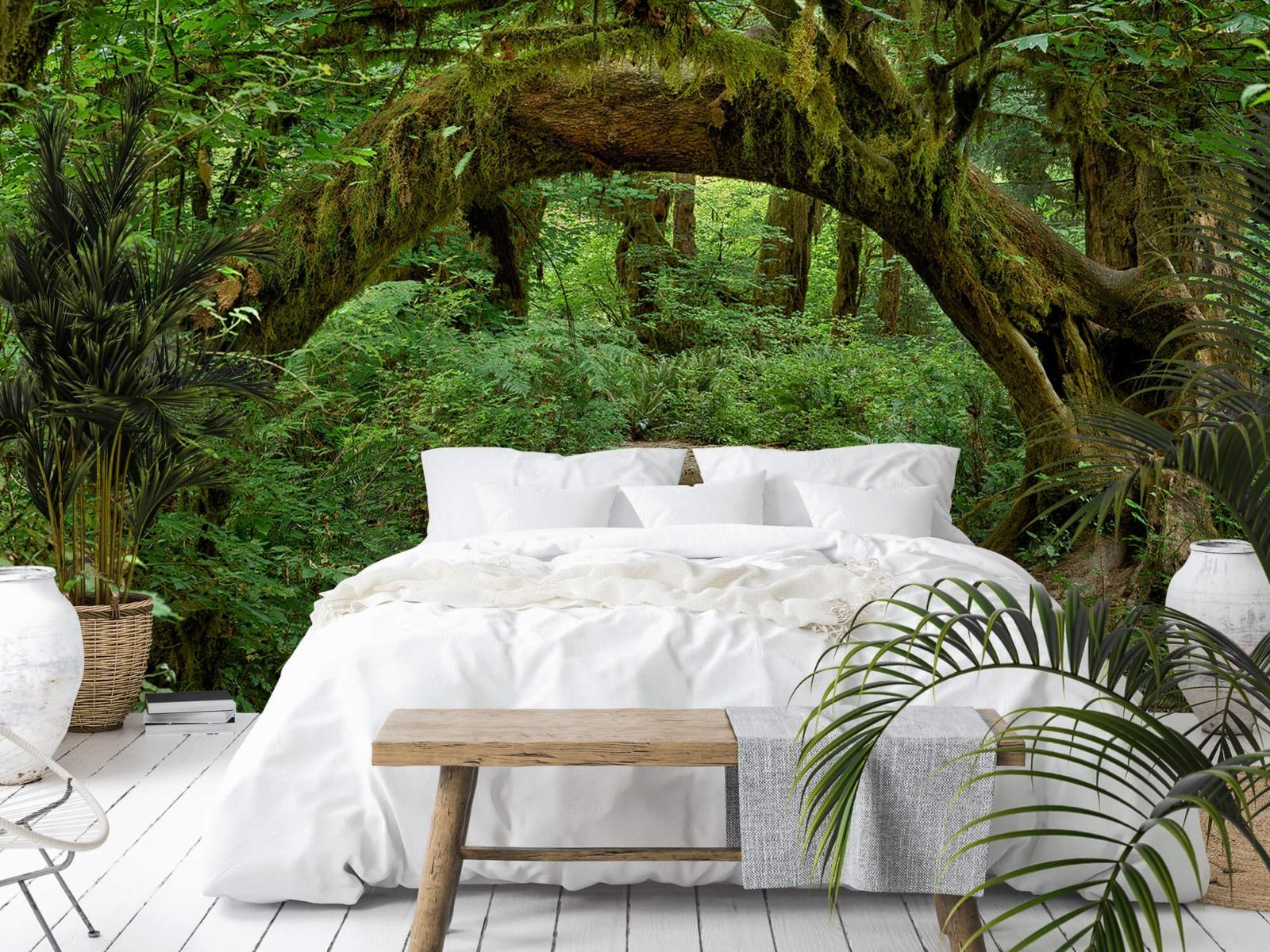 Bos behang - Boom in een boog - Slaapkamer 2