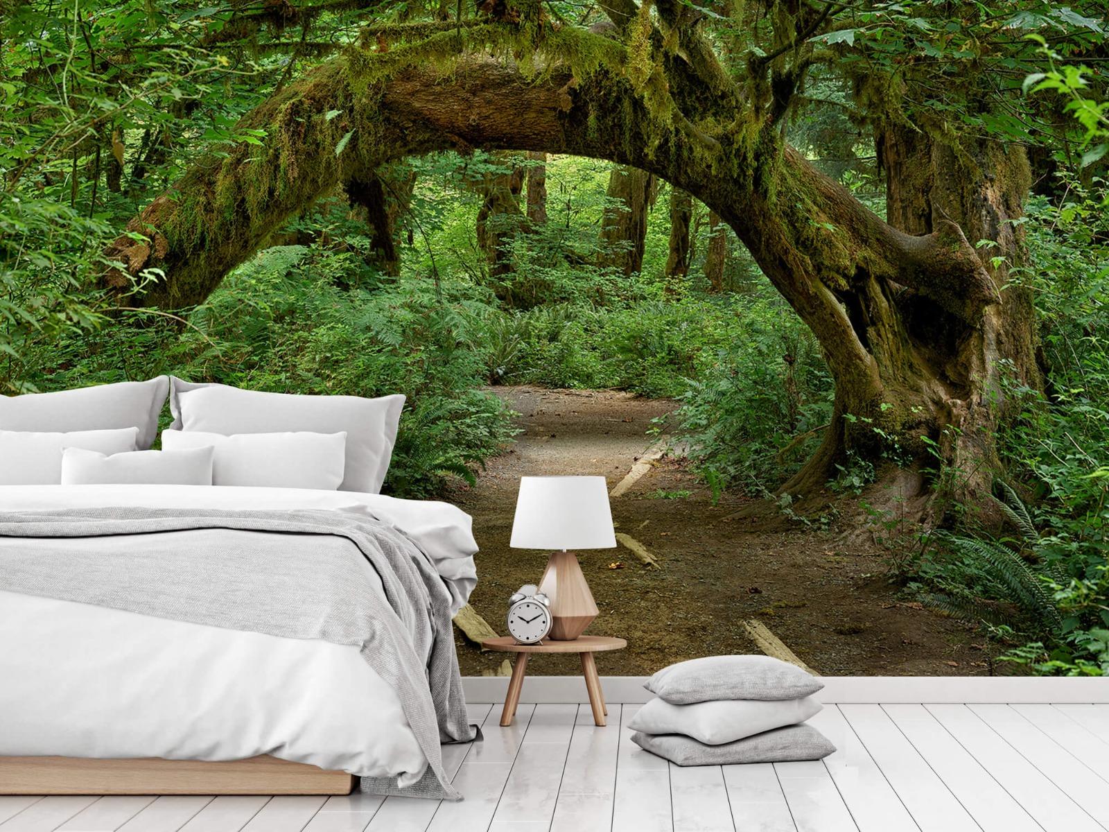Bos behang - Boom in een boog - Slaapkamer 6