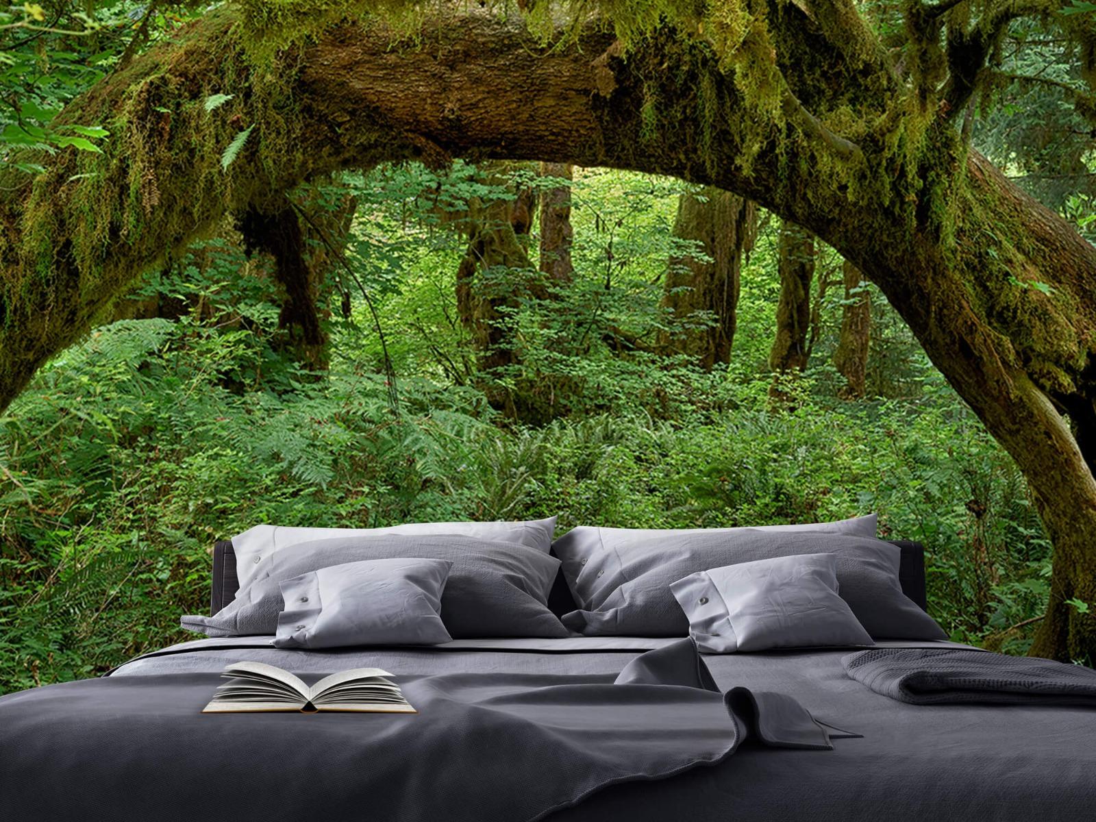 Bos behang - Boom in een boog - Slaapkamer 1