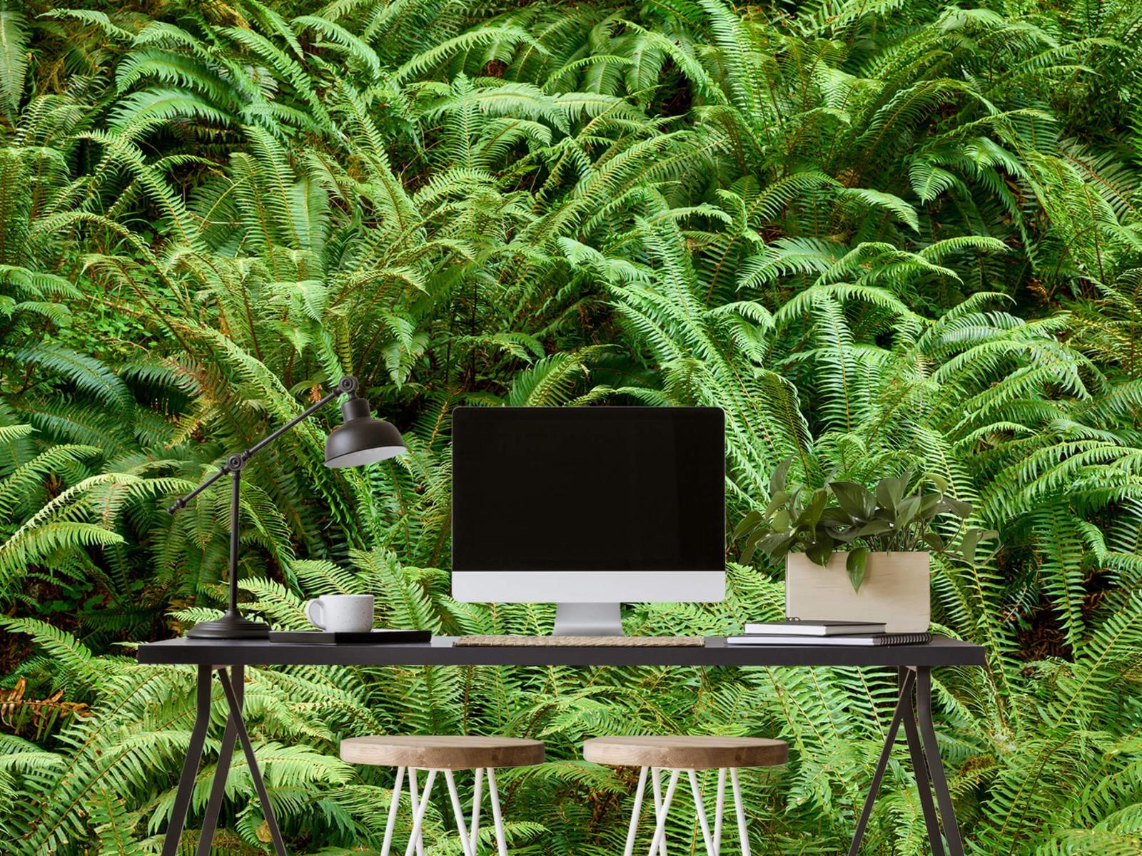 Bladeren - Groene varens - Slaapkamer 6