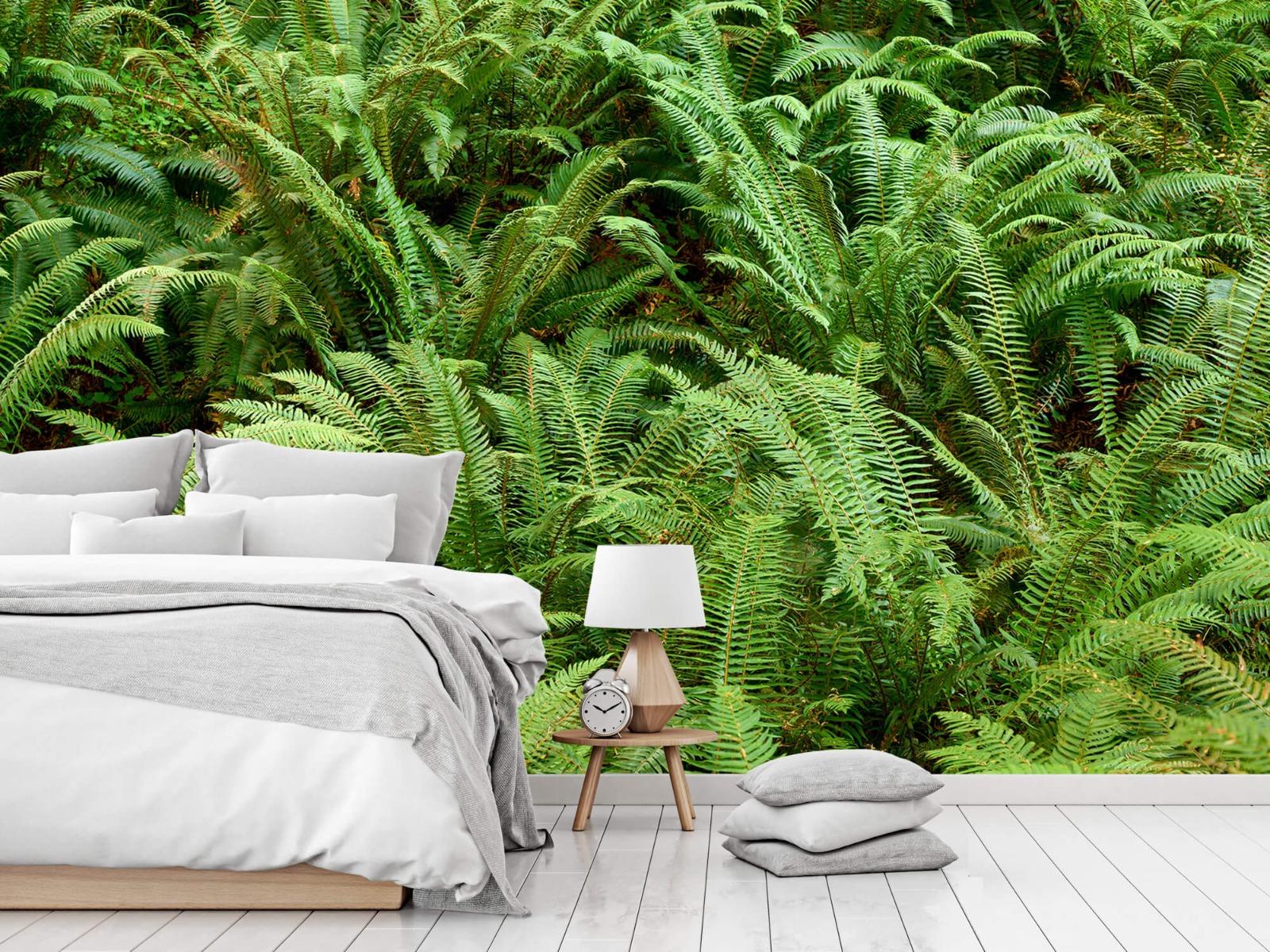 Bladeren - Groene varens - Slaapkamer 12
