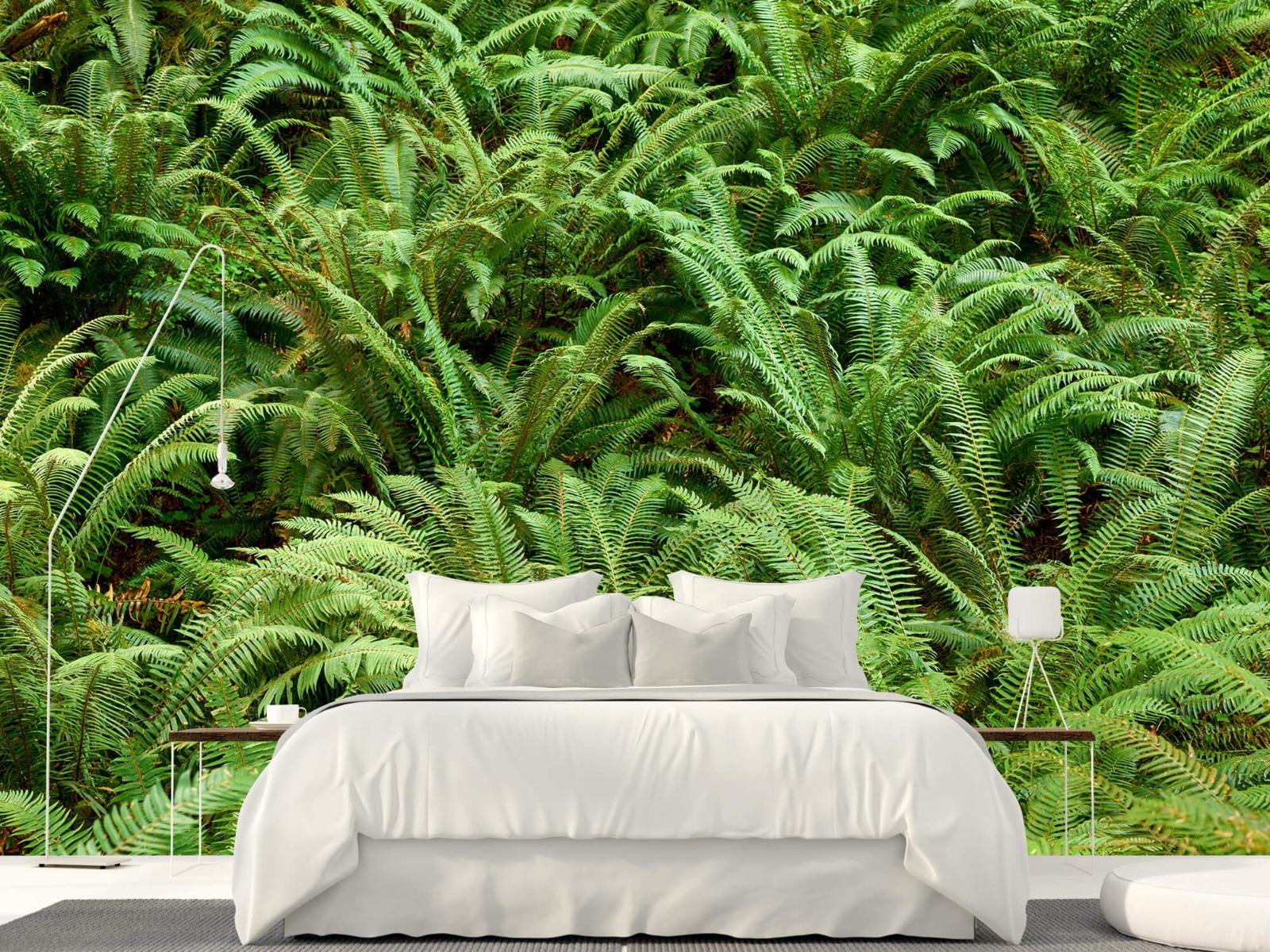 Bladeren - Groene varens - Slaapkamer 1