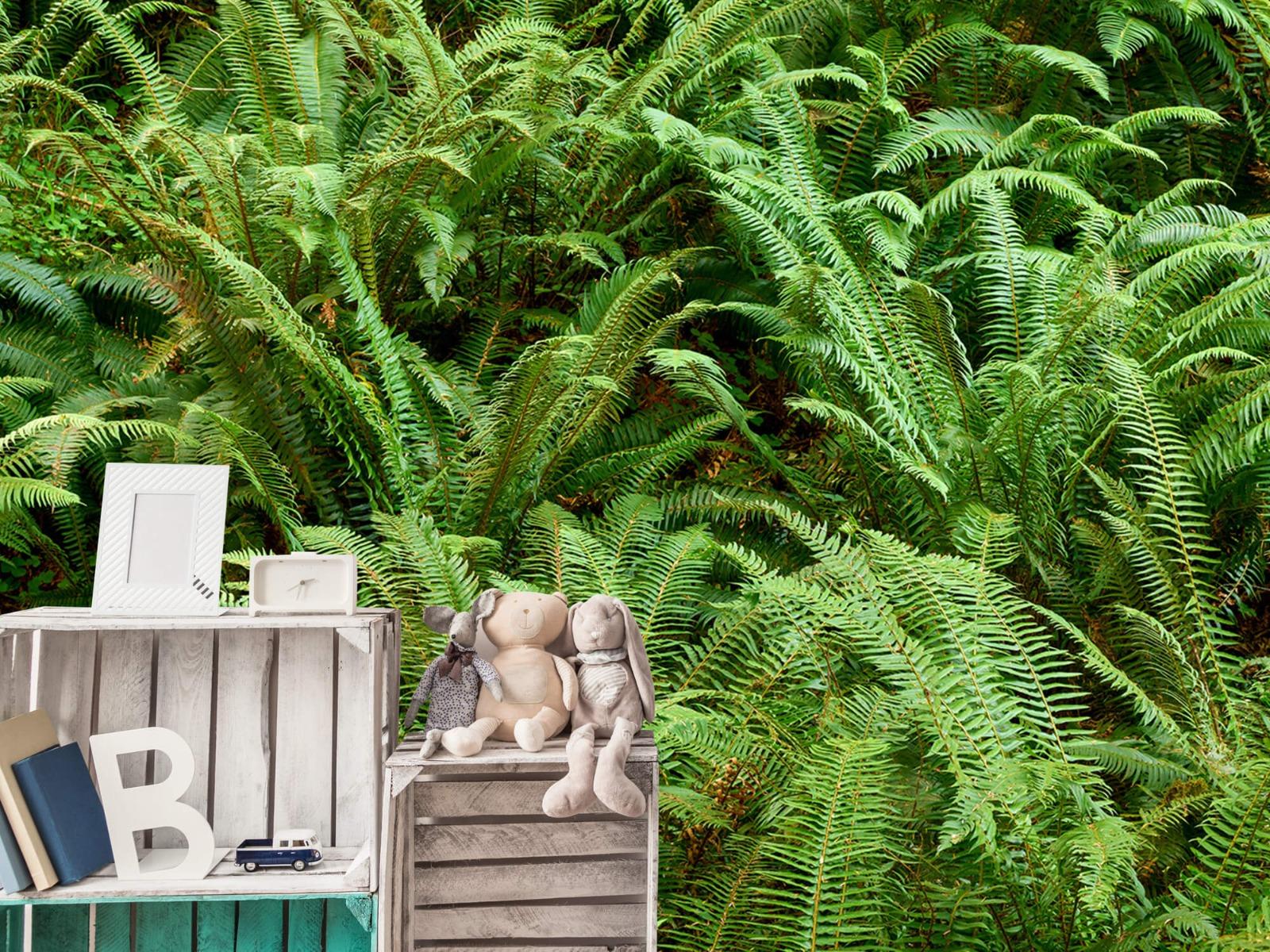 Bladeren - Groene varens - Slaapkamer 17
