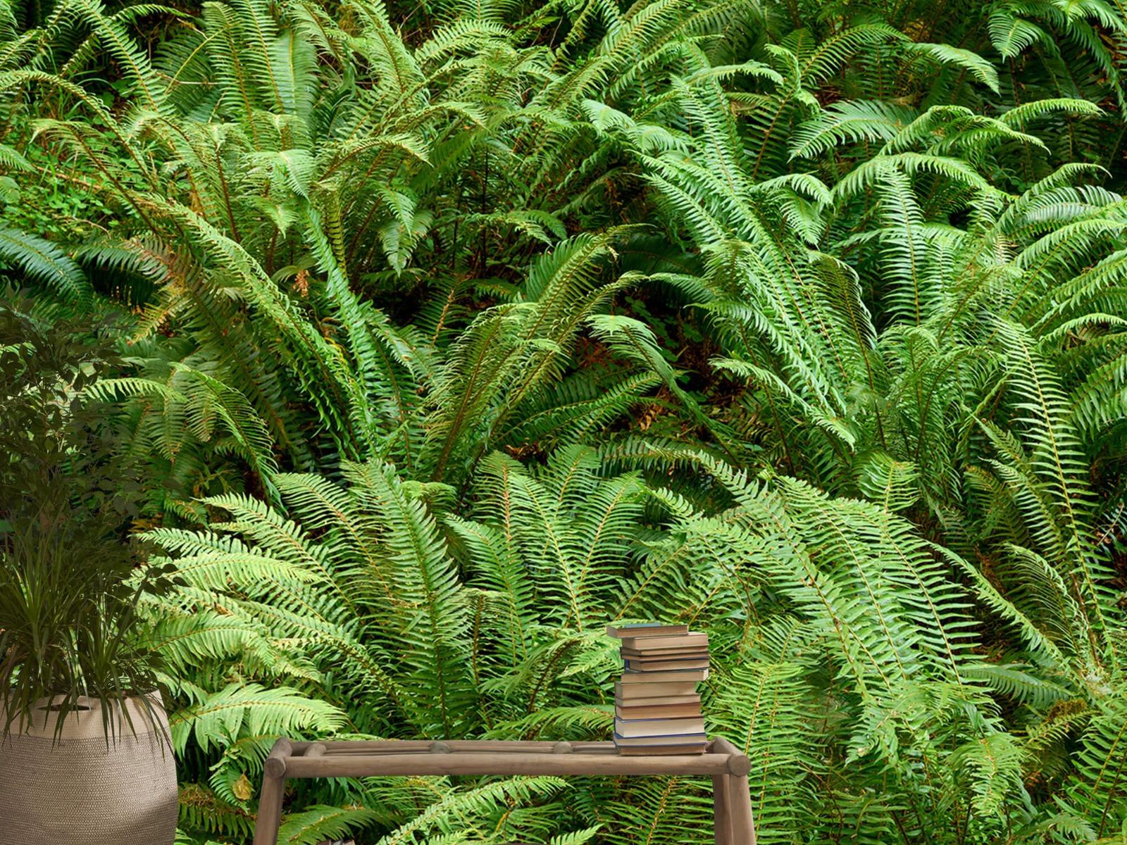 Bladeren - Groene varens - Slaapkamer 20