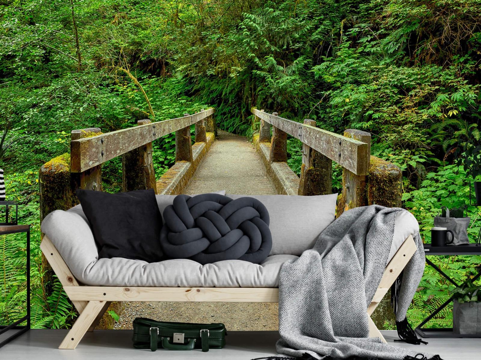 Bomen - Brug in het bos - Slaapkamer 10