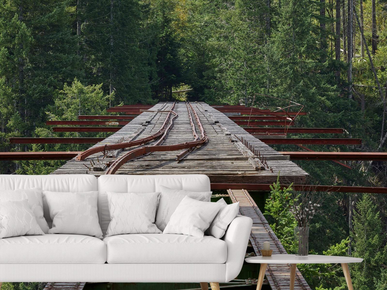Bruggen - Oude spoorbrug - Slaapkamer 6