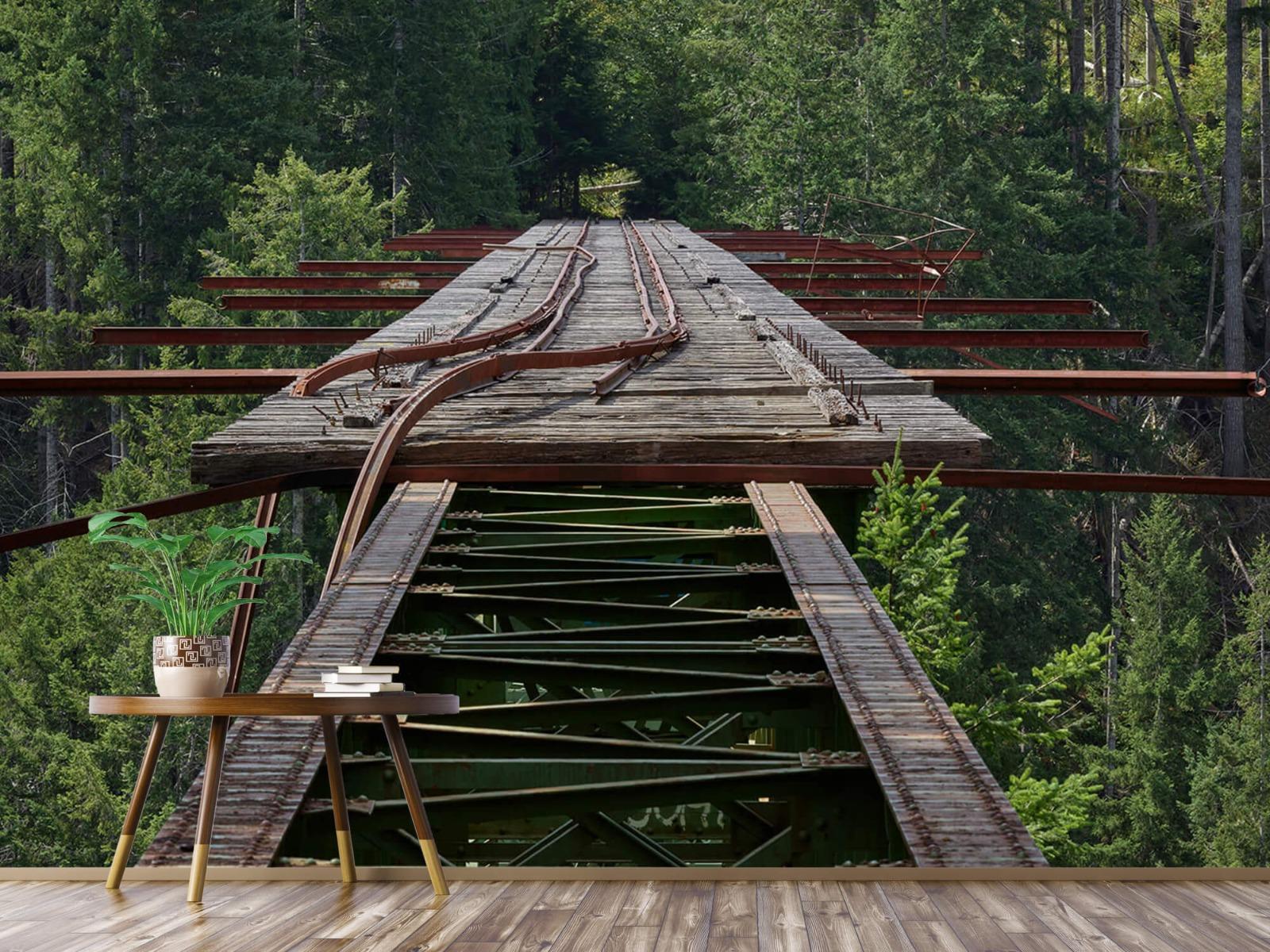 Bruggen - Oude spoorbrug - Slaapkamer 7