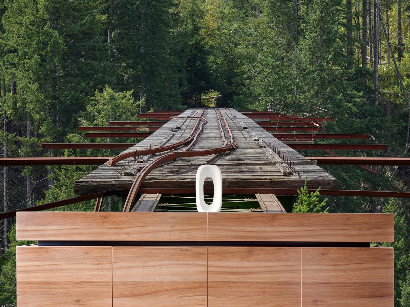Bruggen - Oude spoorbrug - Slaapkamer 21