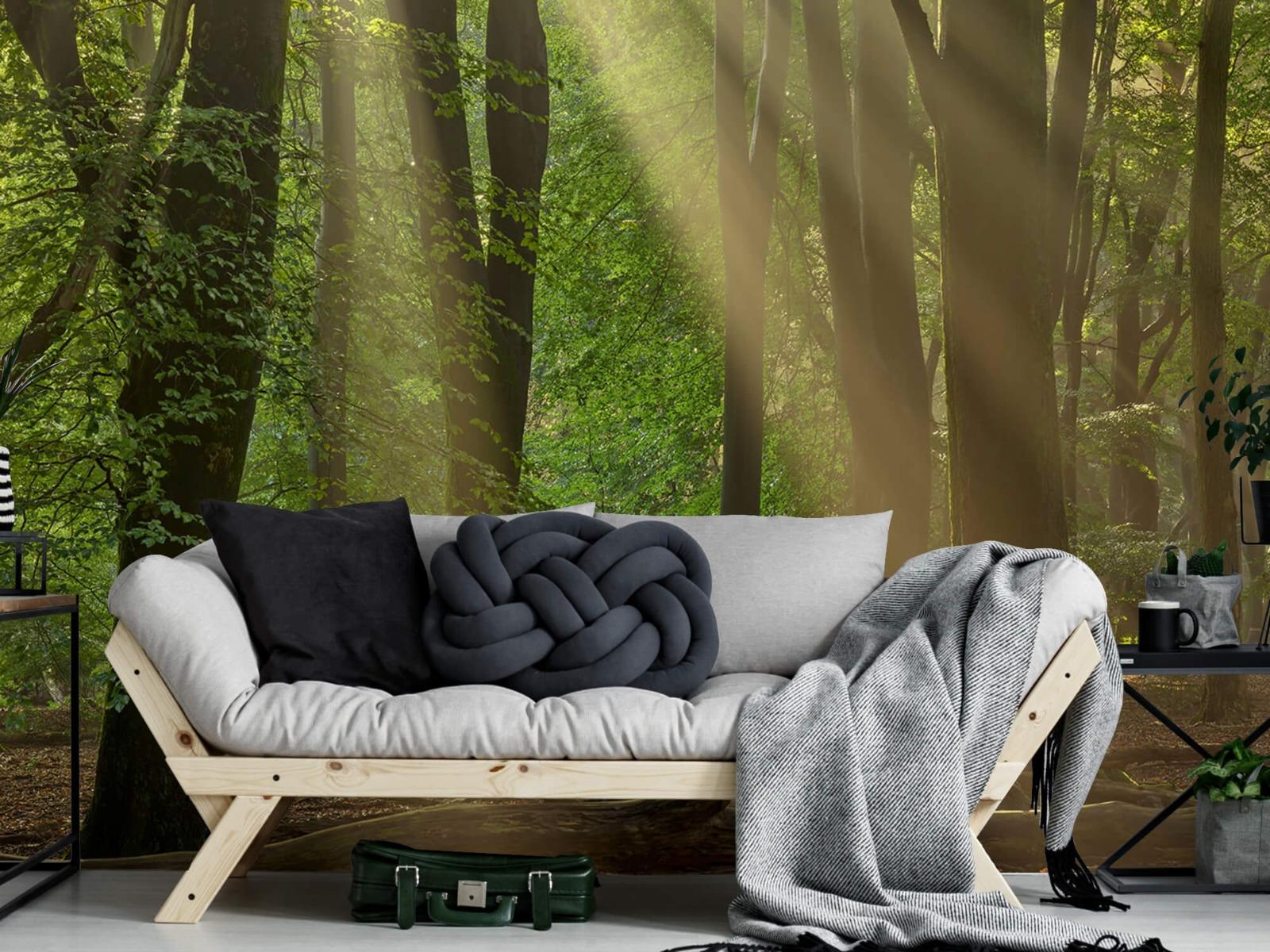 Bomen - Zonneharpen in het bos - Slaapkamer 4