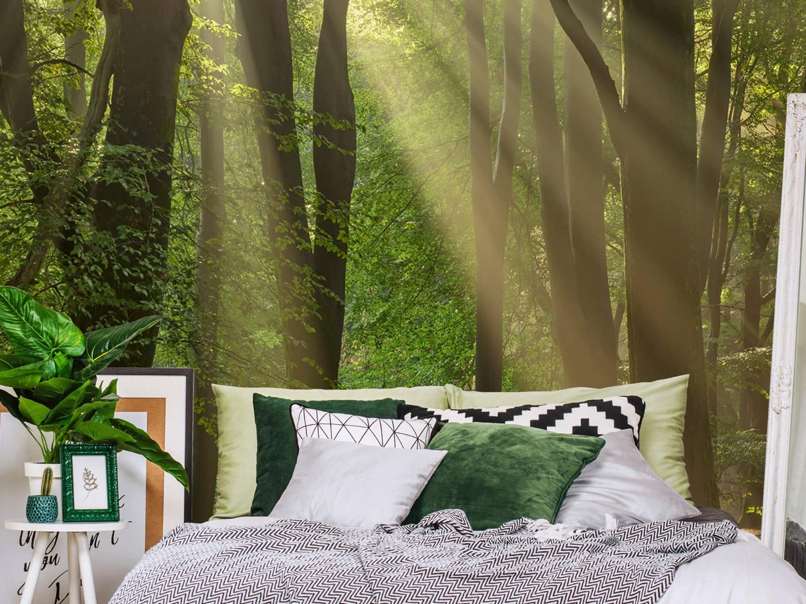 Bomen - Zonneharpen in het bos - Slaapkamer 3