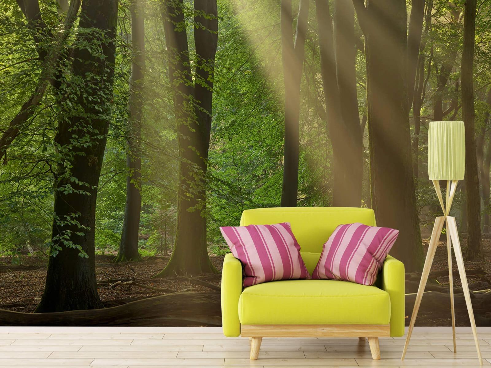 Bomen - Zonneharpen in het bos - Slaapkamer 18