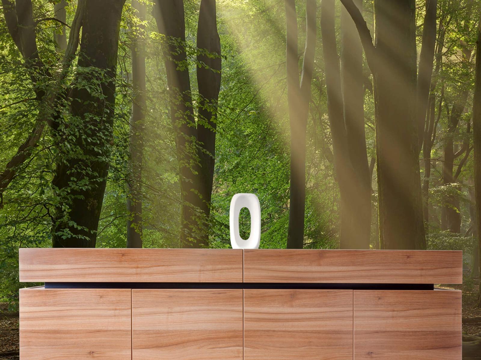 Bomen - Zonneharpen in het bos - Slaapkamer 20