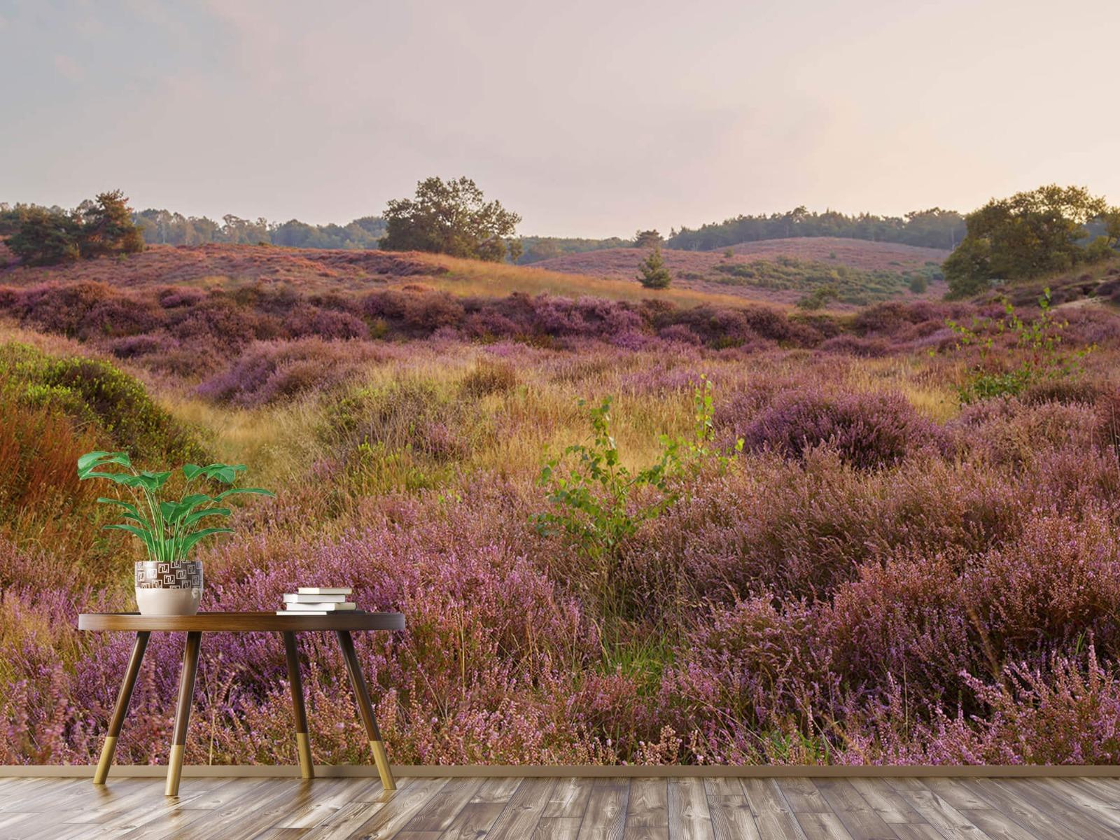 Landschap - Heide bij zonsopgang - Slaapkamer 4