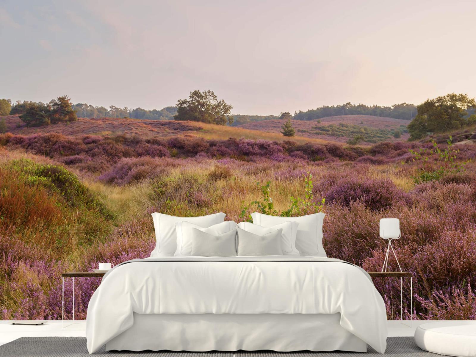 Landschap - Heide bij zonsopgang - Slaapkamer 22