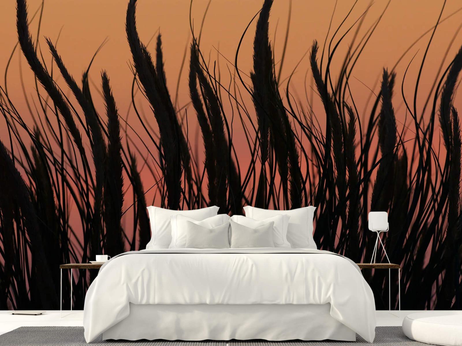Zomer behang - Helmgras in de avond - Slaapkamer 22