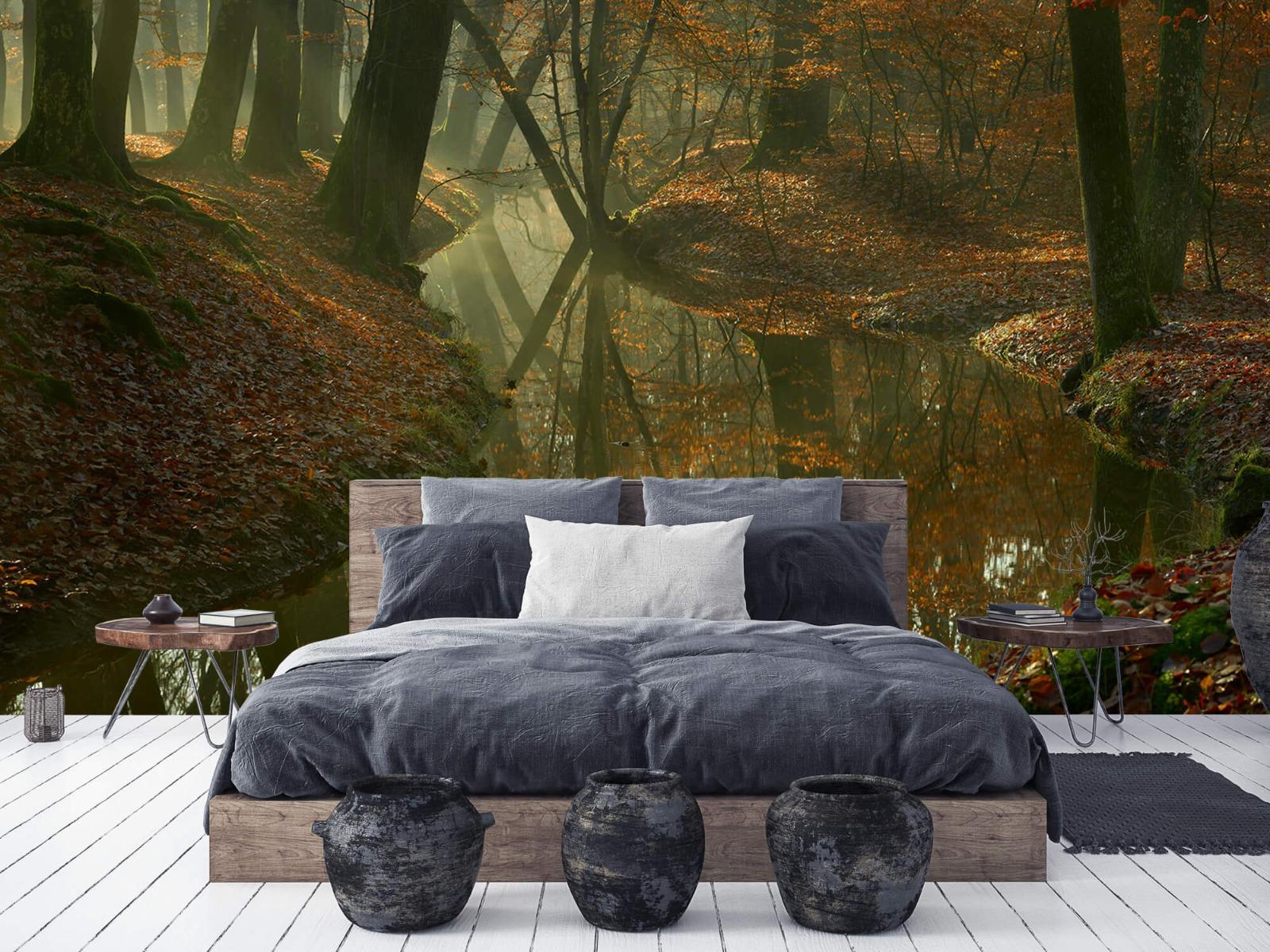 Herfst - Beek door het bos - Slaapkamer 6