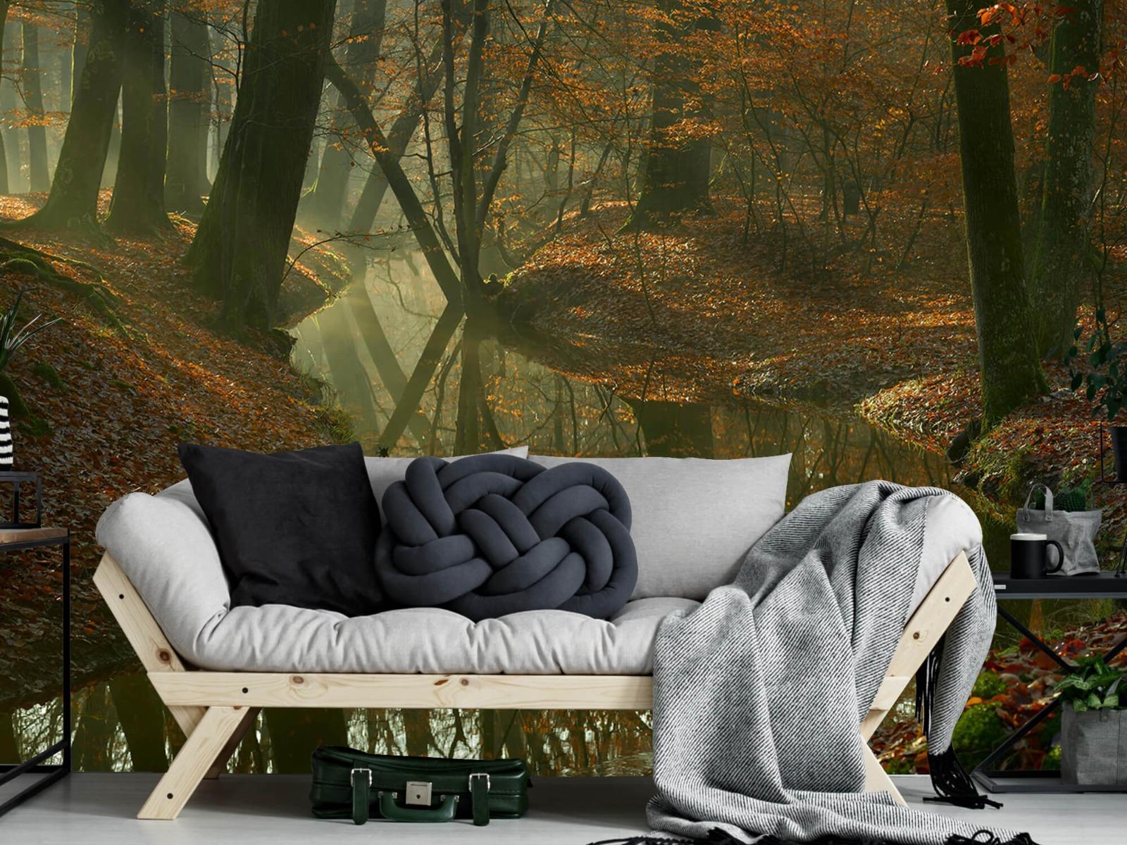 Herfst - Beek door het bos - Slaapkamer 7