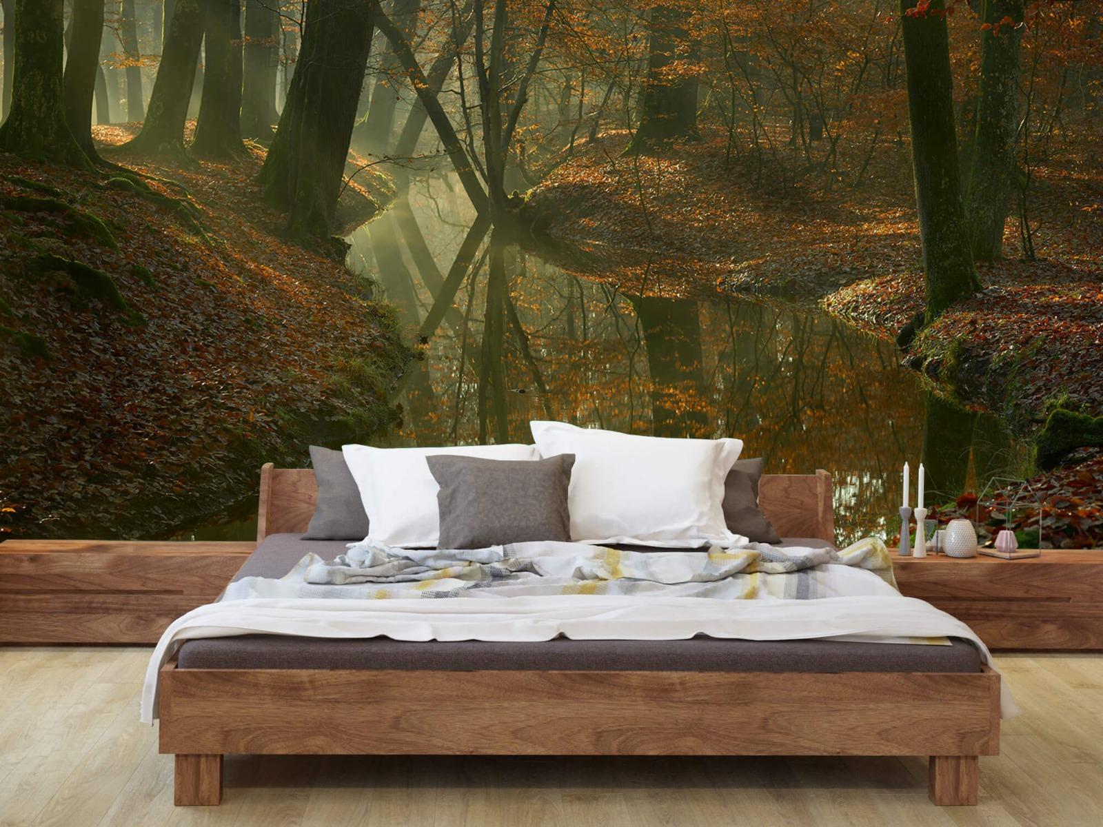 Herfst - Beek door het bos - Slaapkamer 8