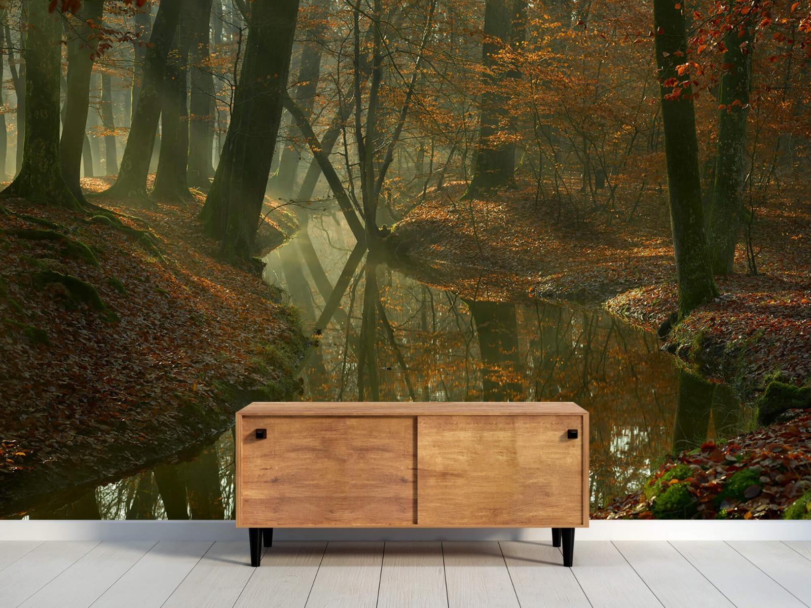Herfst - Beek door het bos - Slaapkamer 10