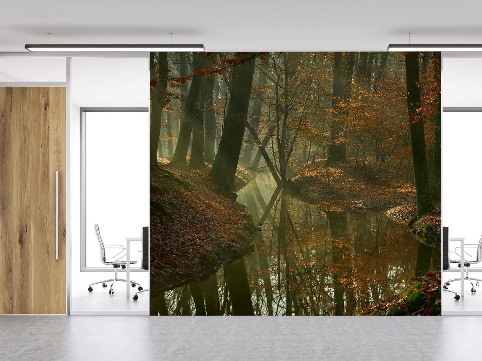 Herfst - Beek door het bos - Slaapkamer 12