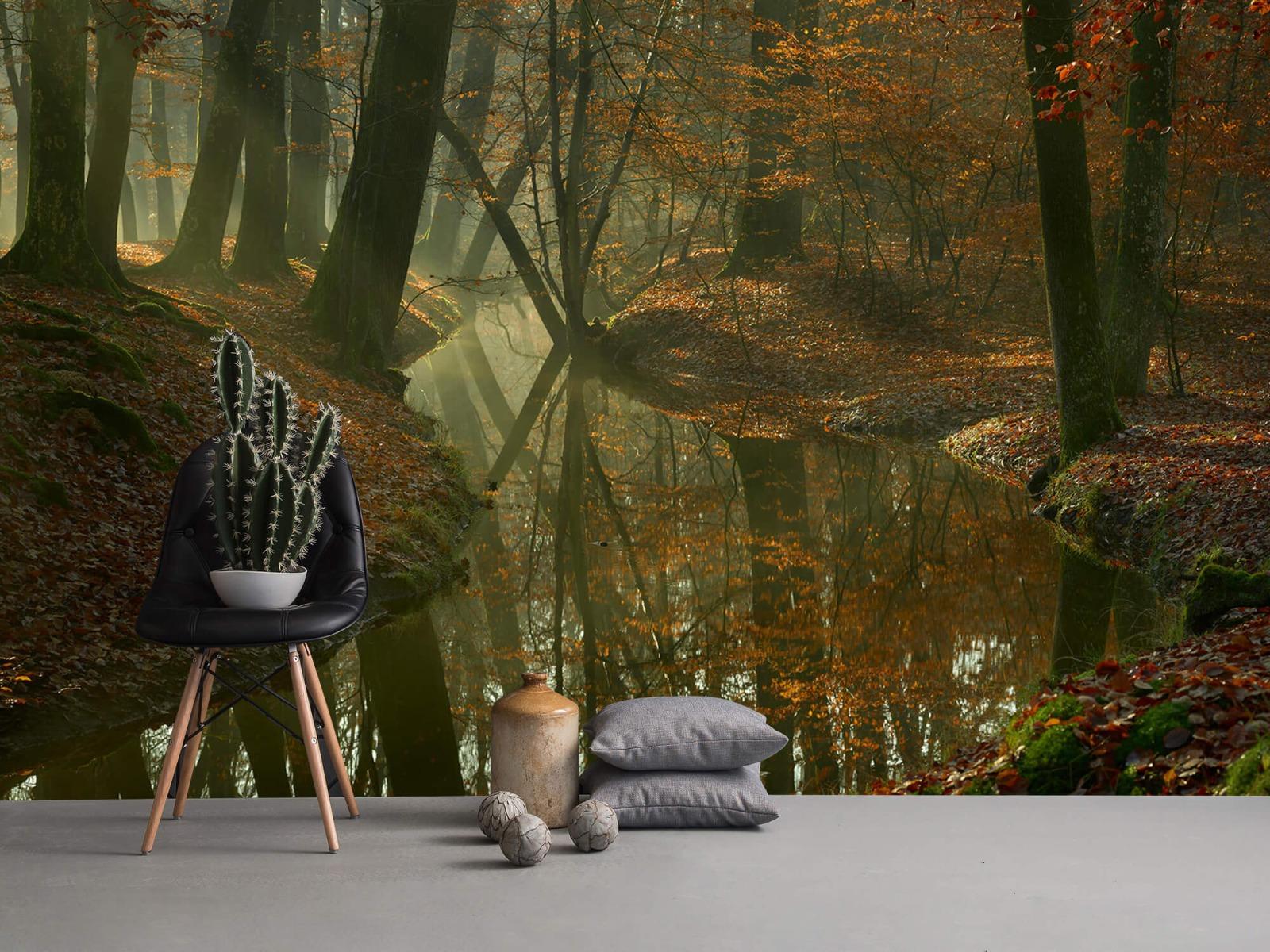 Herfst - Beek door het bos - Slaapkamer 14