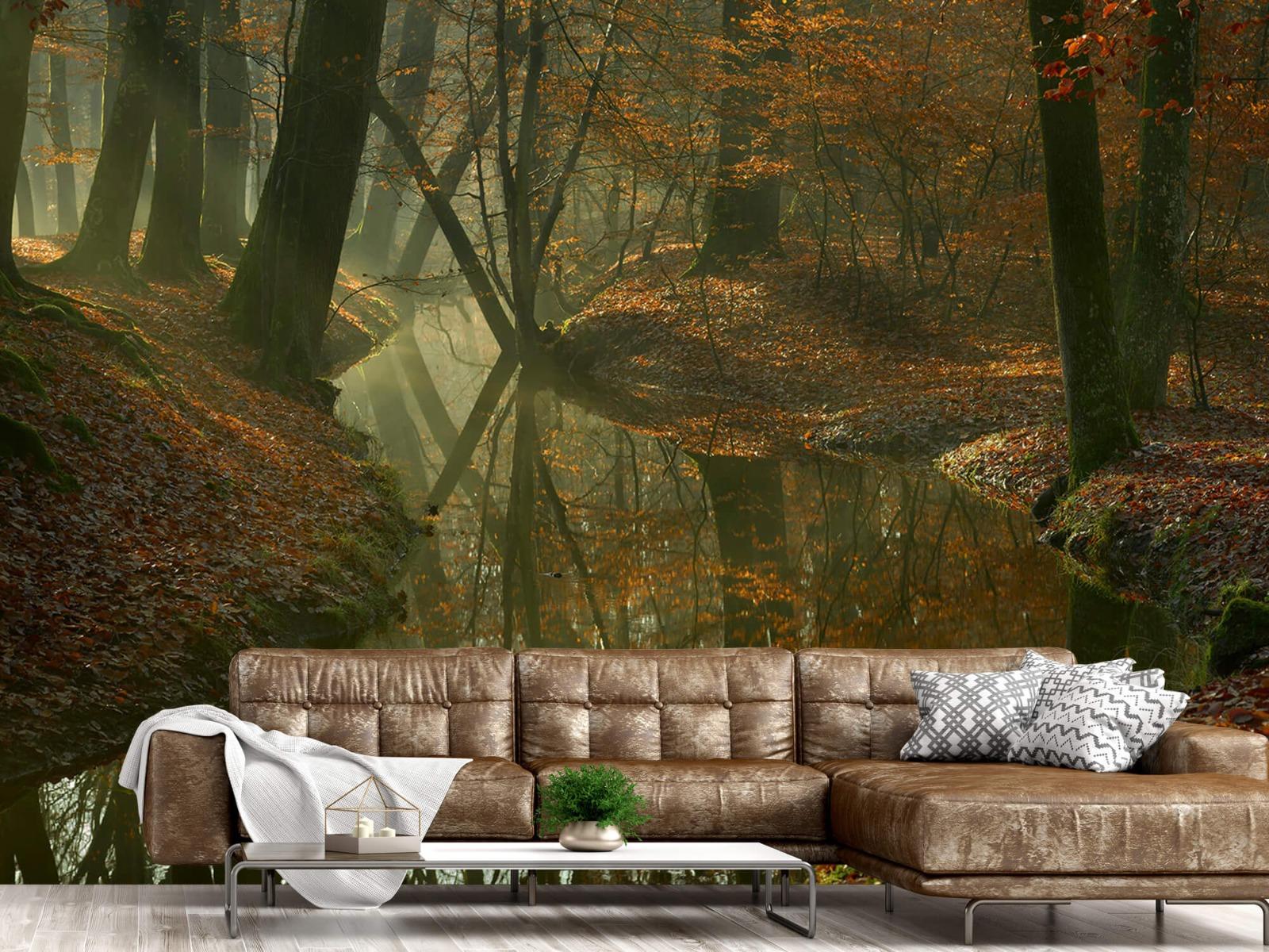 Herfst - Beek door het bos - Slaapkamer 15