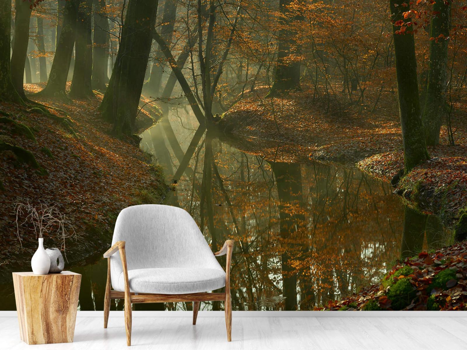Herfst - Beek door het bos - Slaapkamer 19