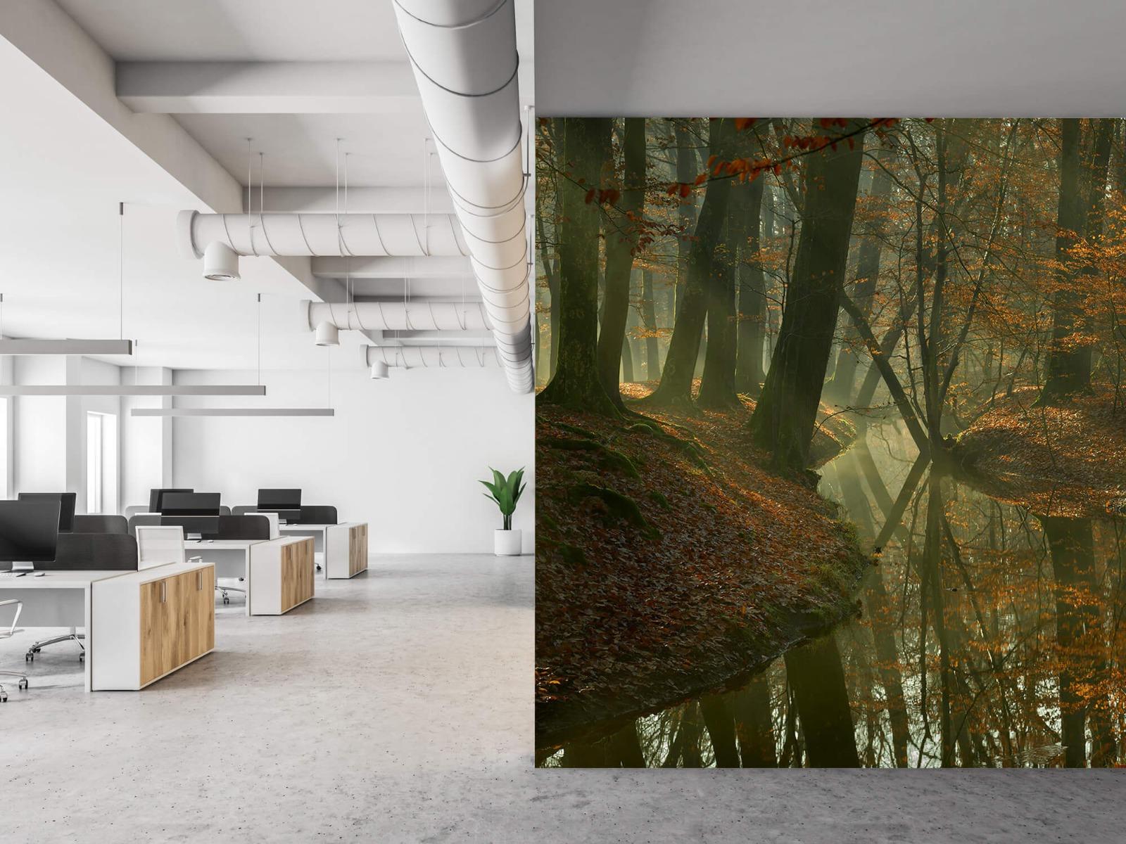 Herfst - Beek door het bos - Slaapkamer 21