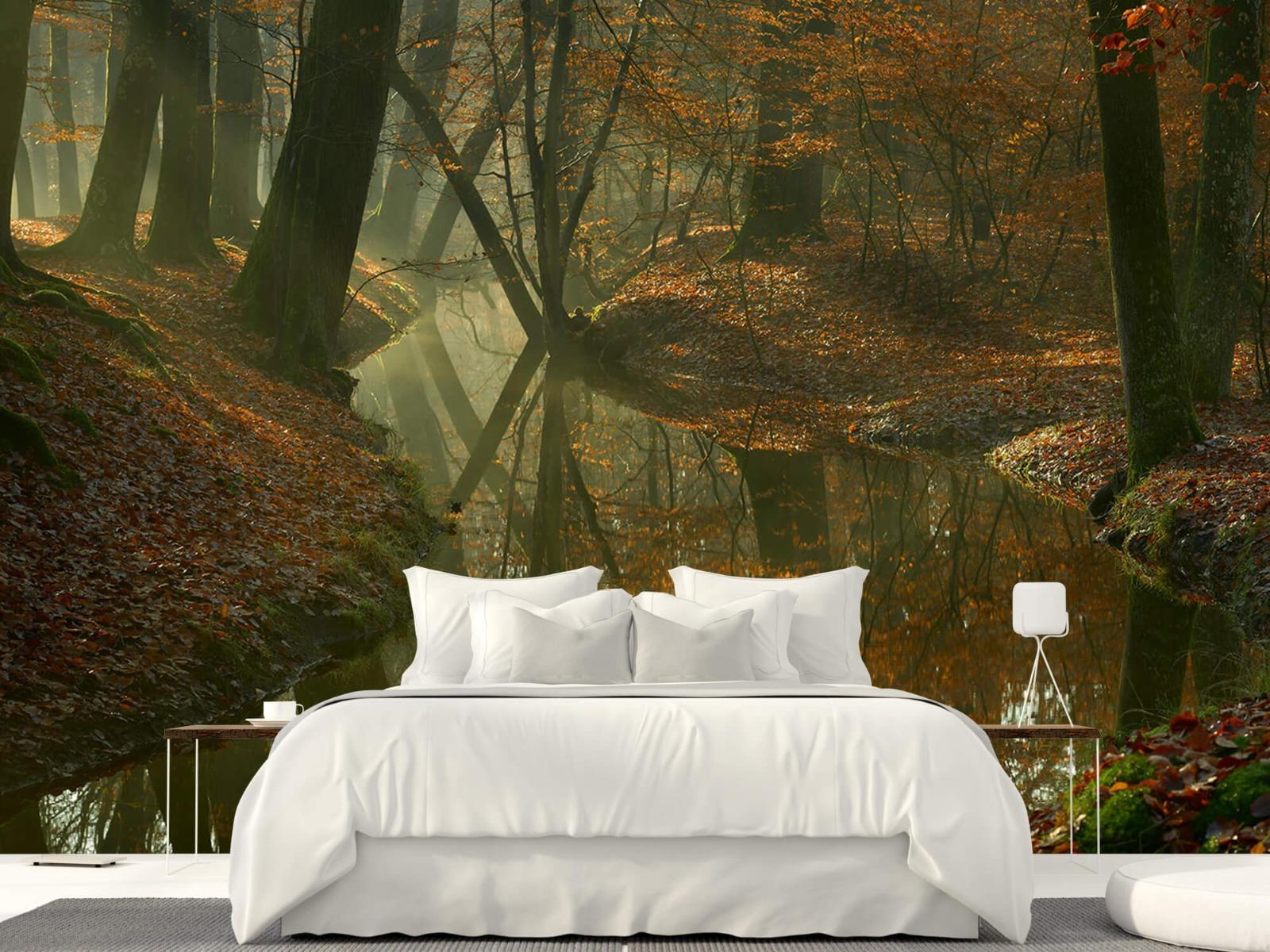 Herfst - Beek door het bos - Slaapkamer 23