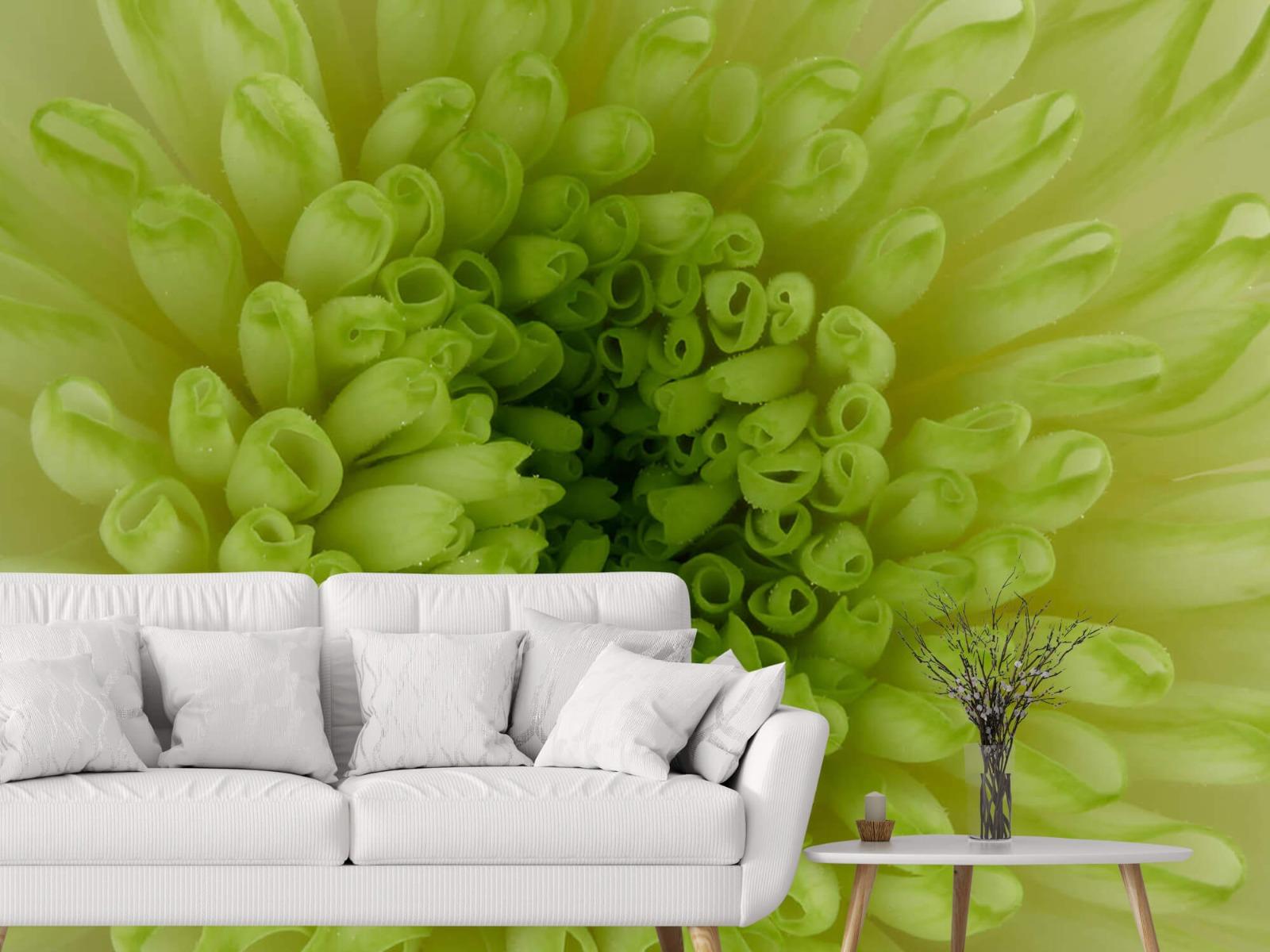 Overige - Close-up bloem - Woonkamer 3