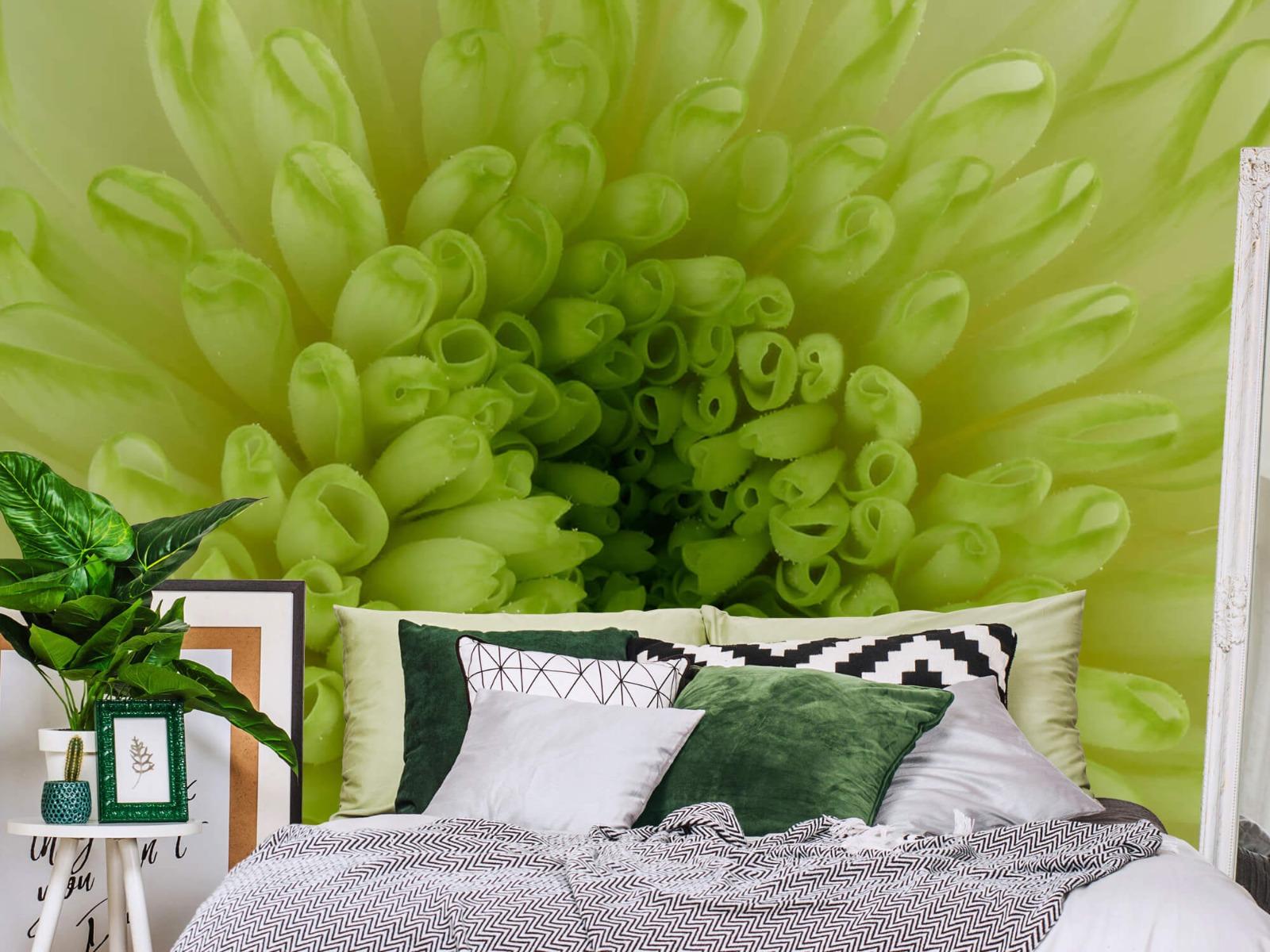 Overige - Close-up bloem - Woonkamer 12