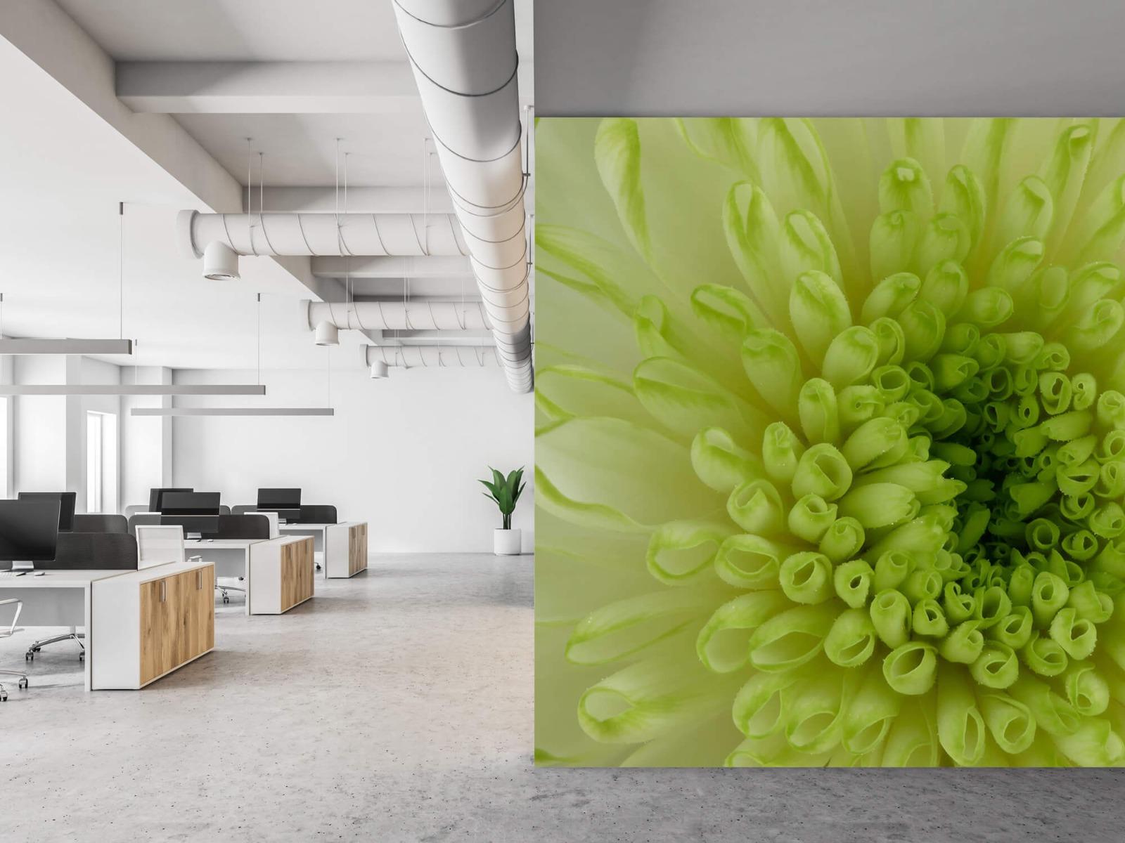 Overige - Close-up bloem - Woonkamer 21