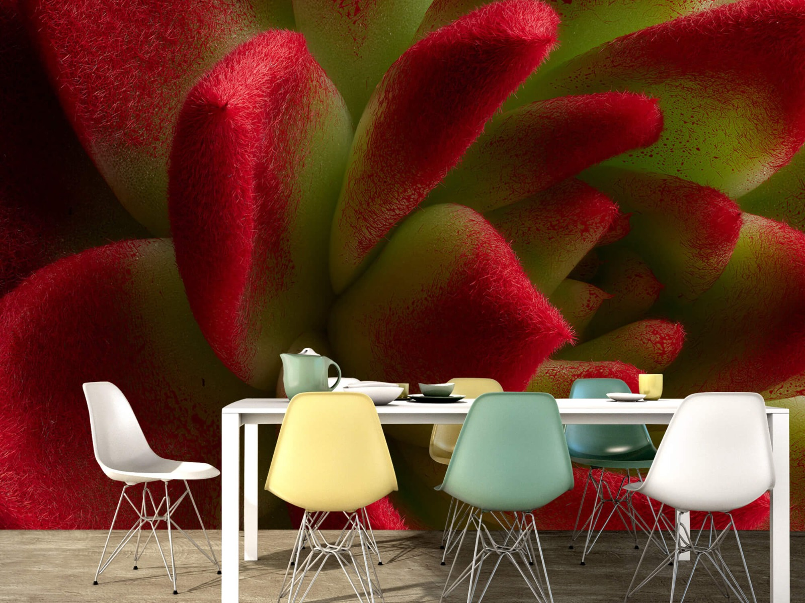Overige - Rode cactus - Slaapkamer 15