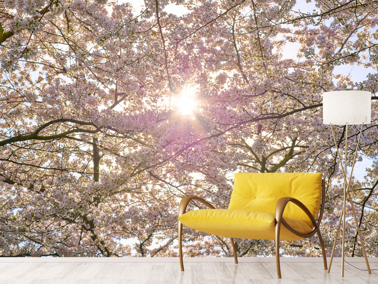 Zon - Bloesem in de zon - Woonkamer 10