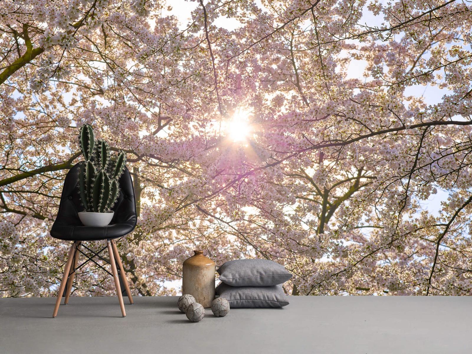 Zon - Bloesem in de zon - Woonkamer 13
