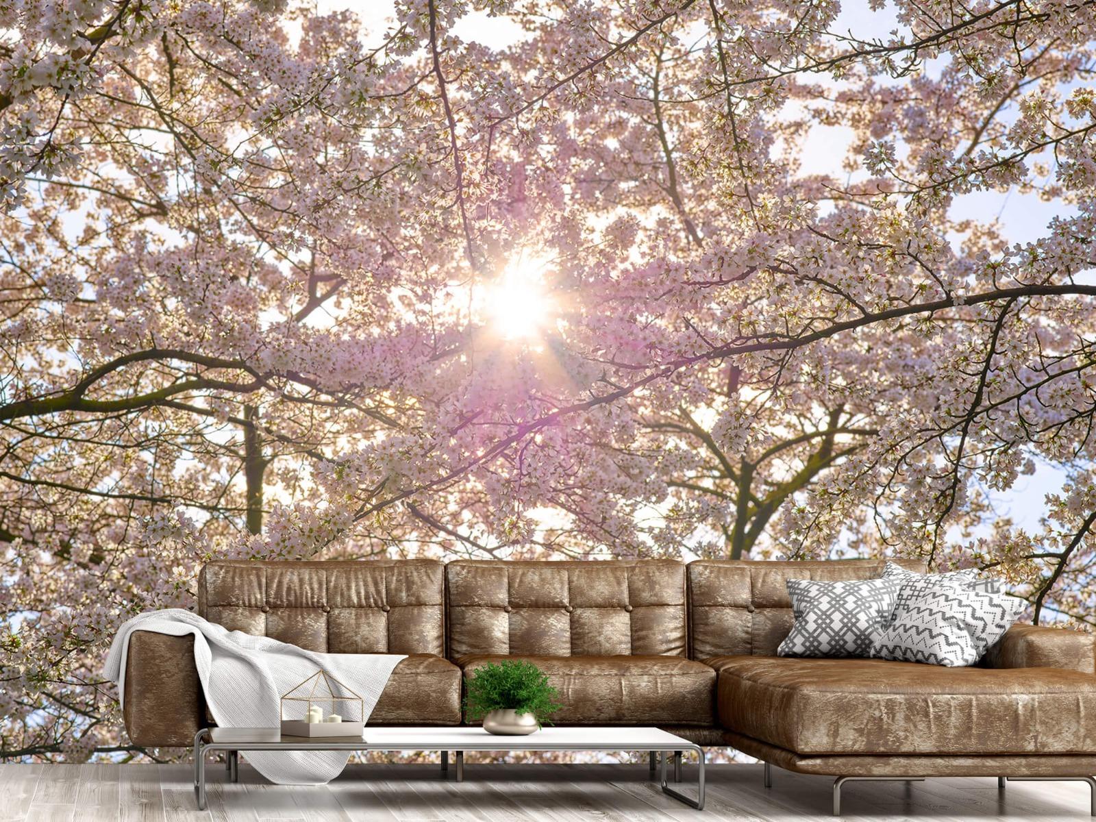 Zon - Bloesem in de zon - Woonkamer 14