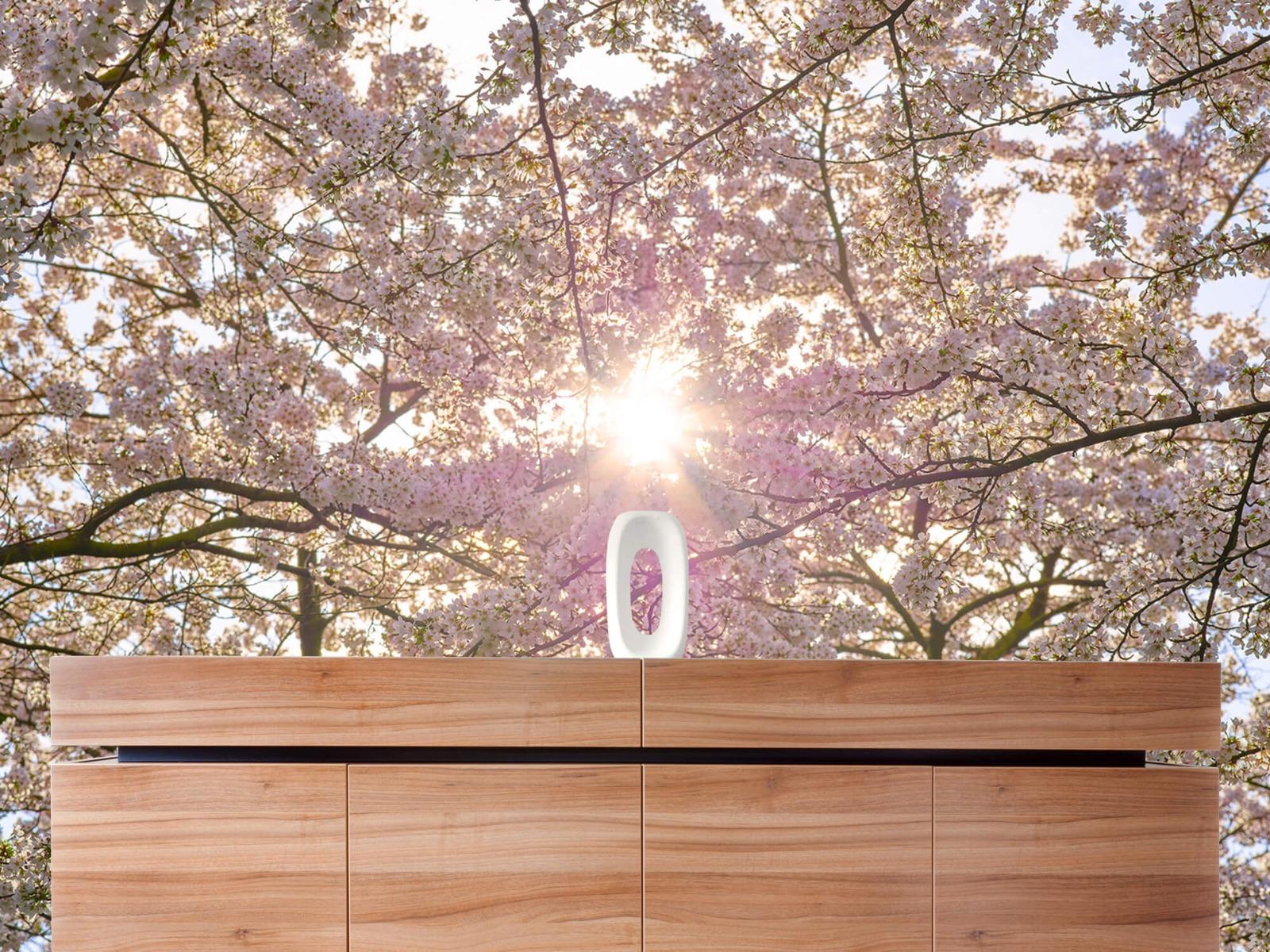 Zon - Bloesem in de zon - Woonkamer 20