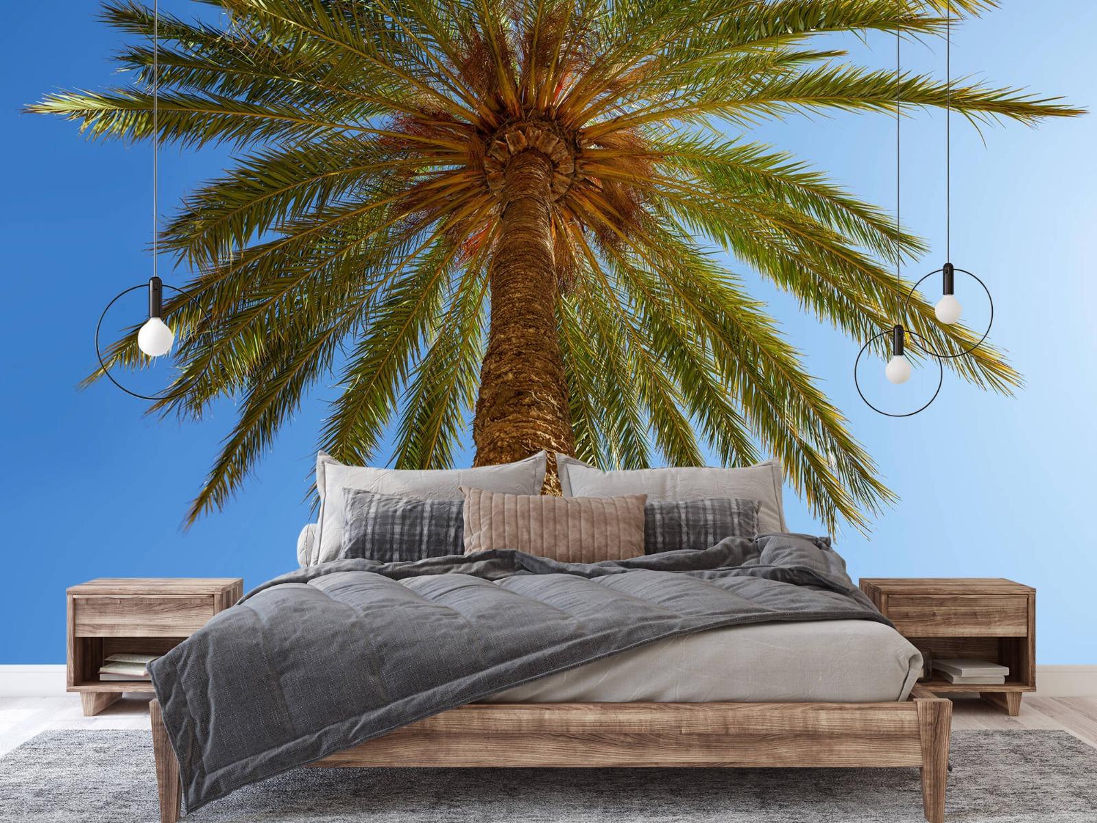 Palmbomen - Gedetailleerde Palmboom - Slaapkamer 1