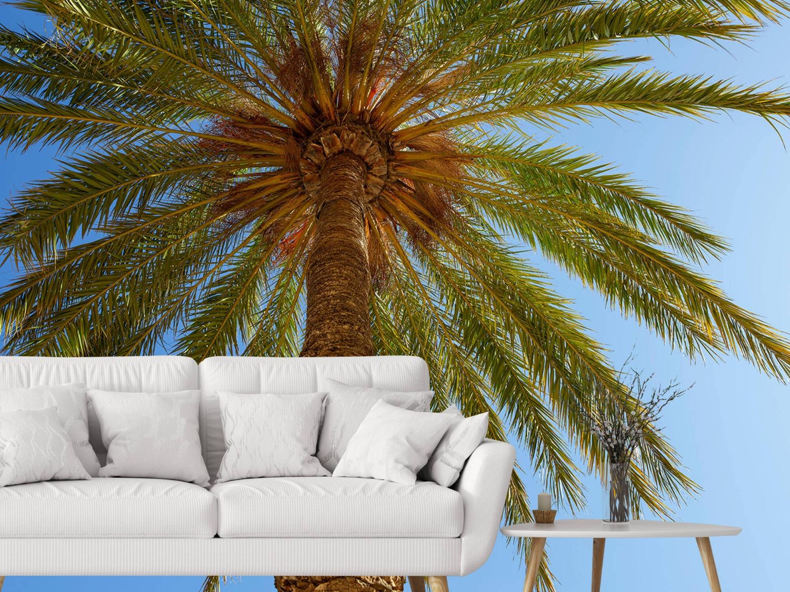 Palmbomen - Gedetailleerde Palmboom - Slaapkamer 4