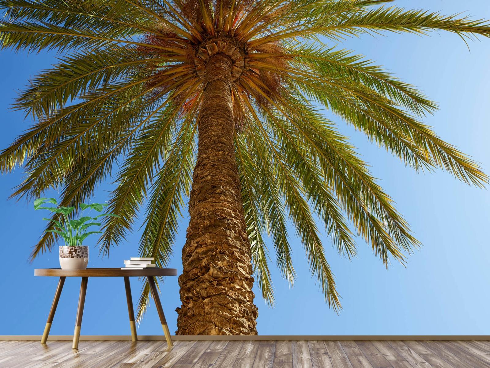 Palmbomen - Gedetailleerde Palmboom - Slaapkamer 5